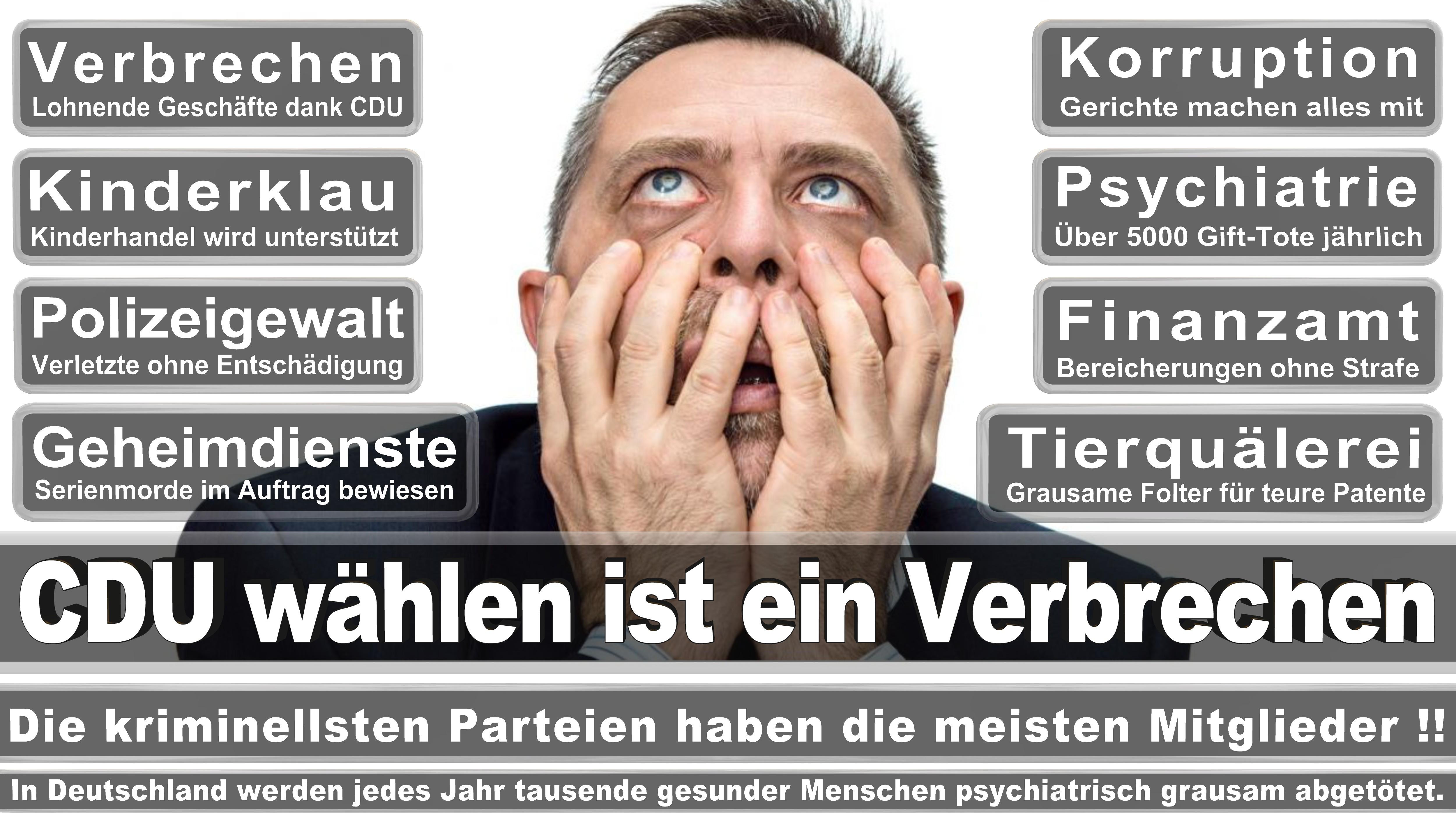 Rechtsanwalt Dr Dietrich Kressel,