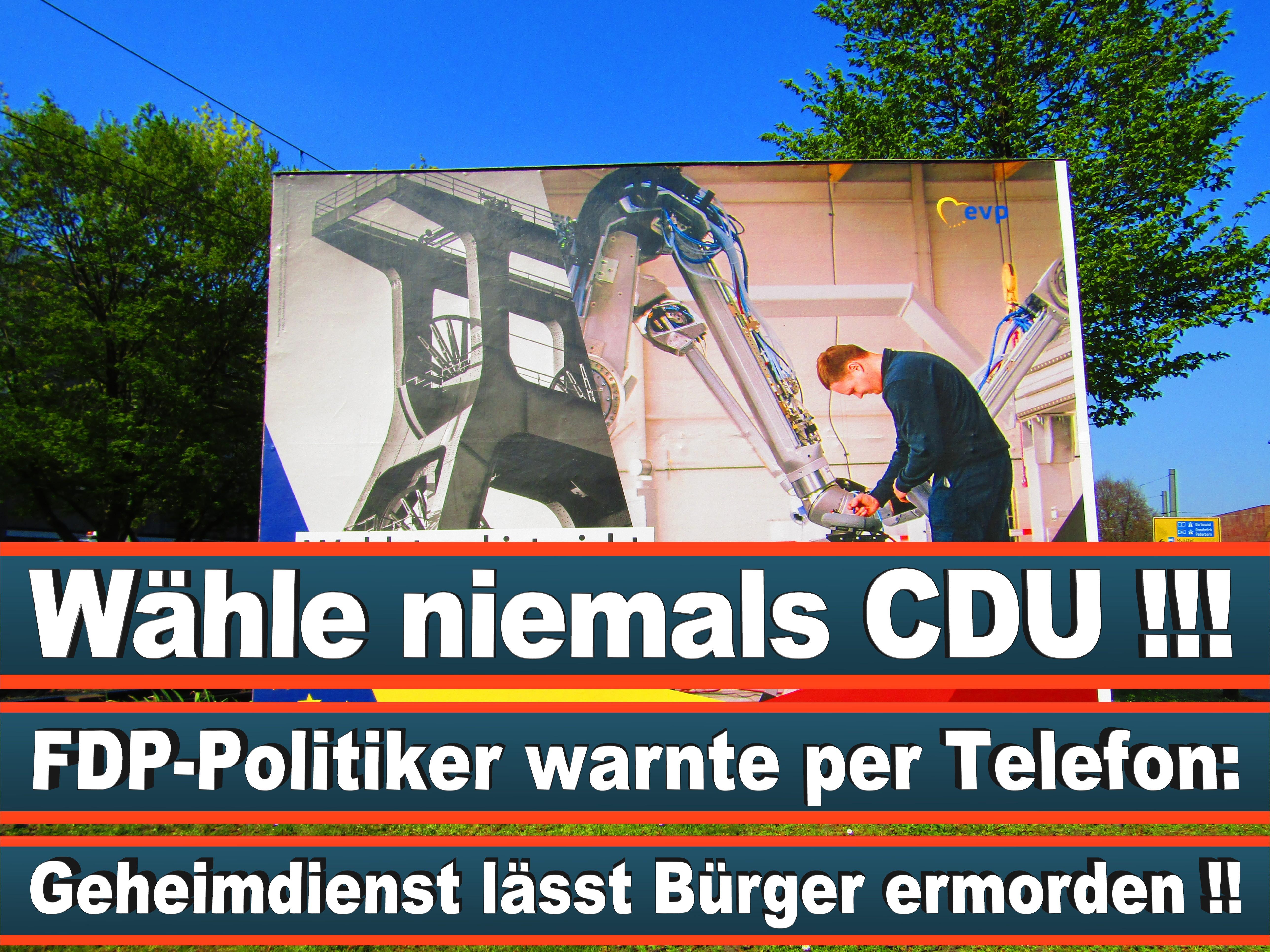 Europawahl Deutschland 26 (116)