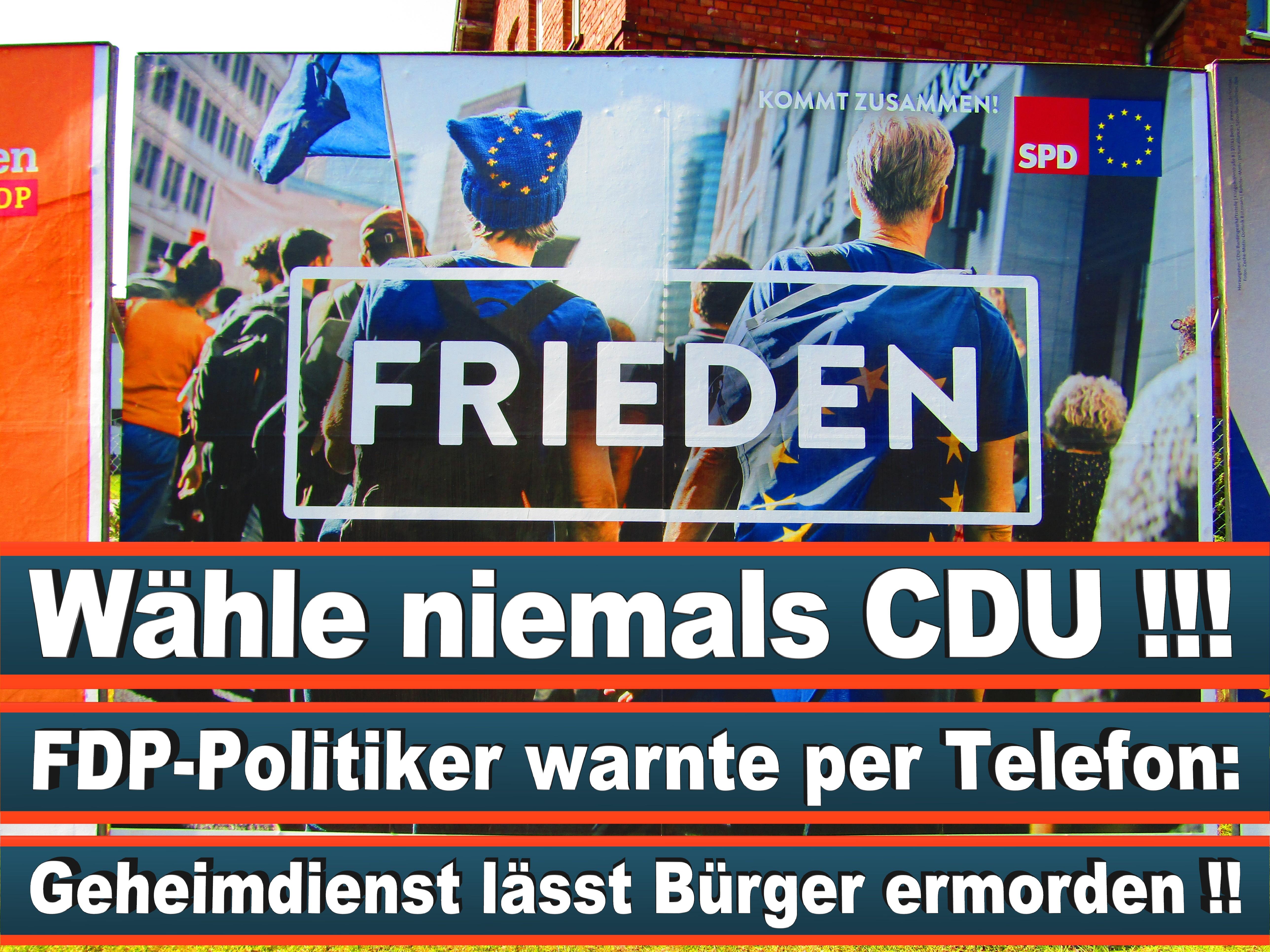Europawahl Deutschland 26 (132)