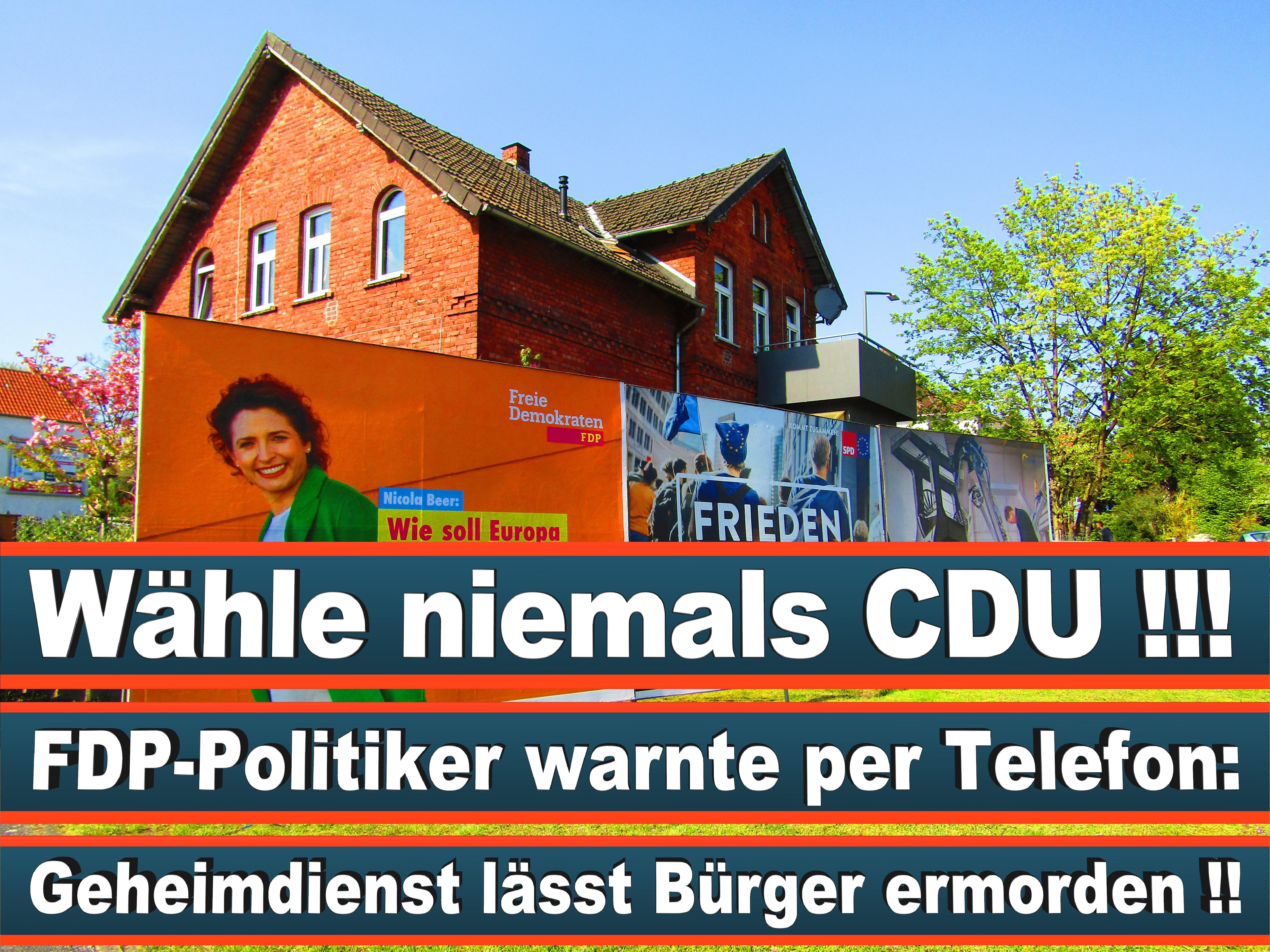 Europawahl Deutschland 26 (135)