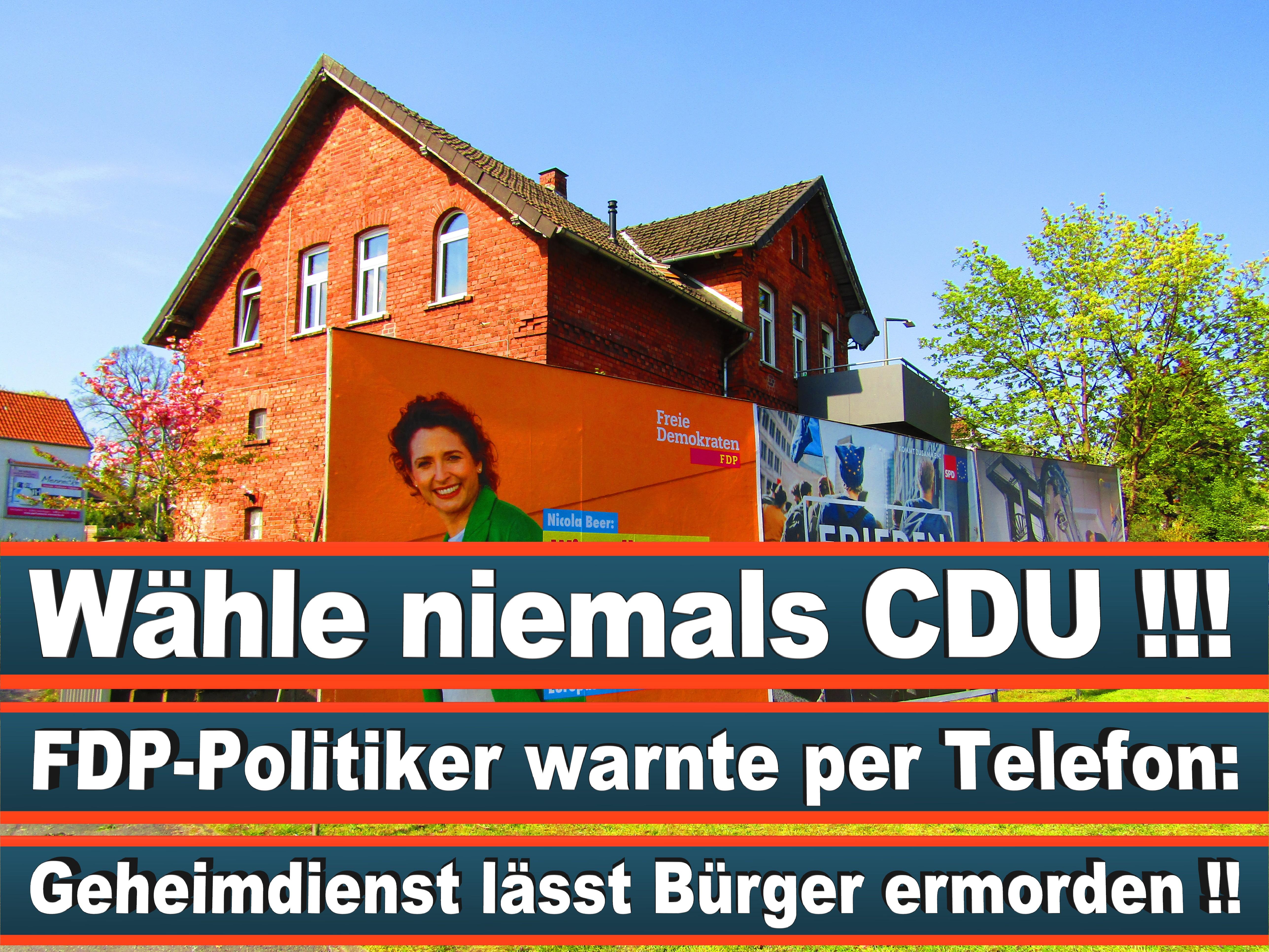 Europawahl Deutschland 26 (136)