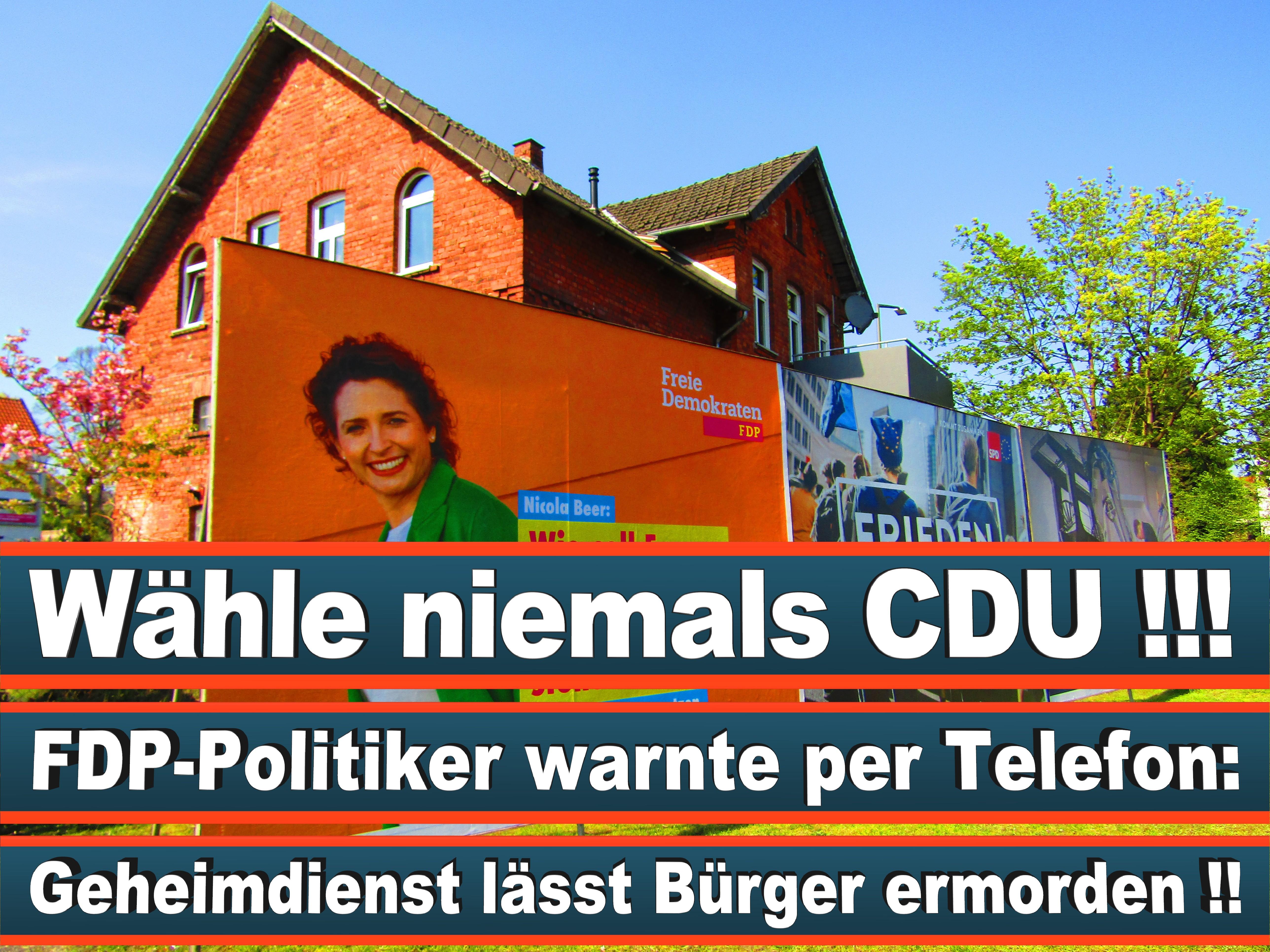 Europawahl Deutschland 26 (137)
