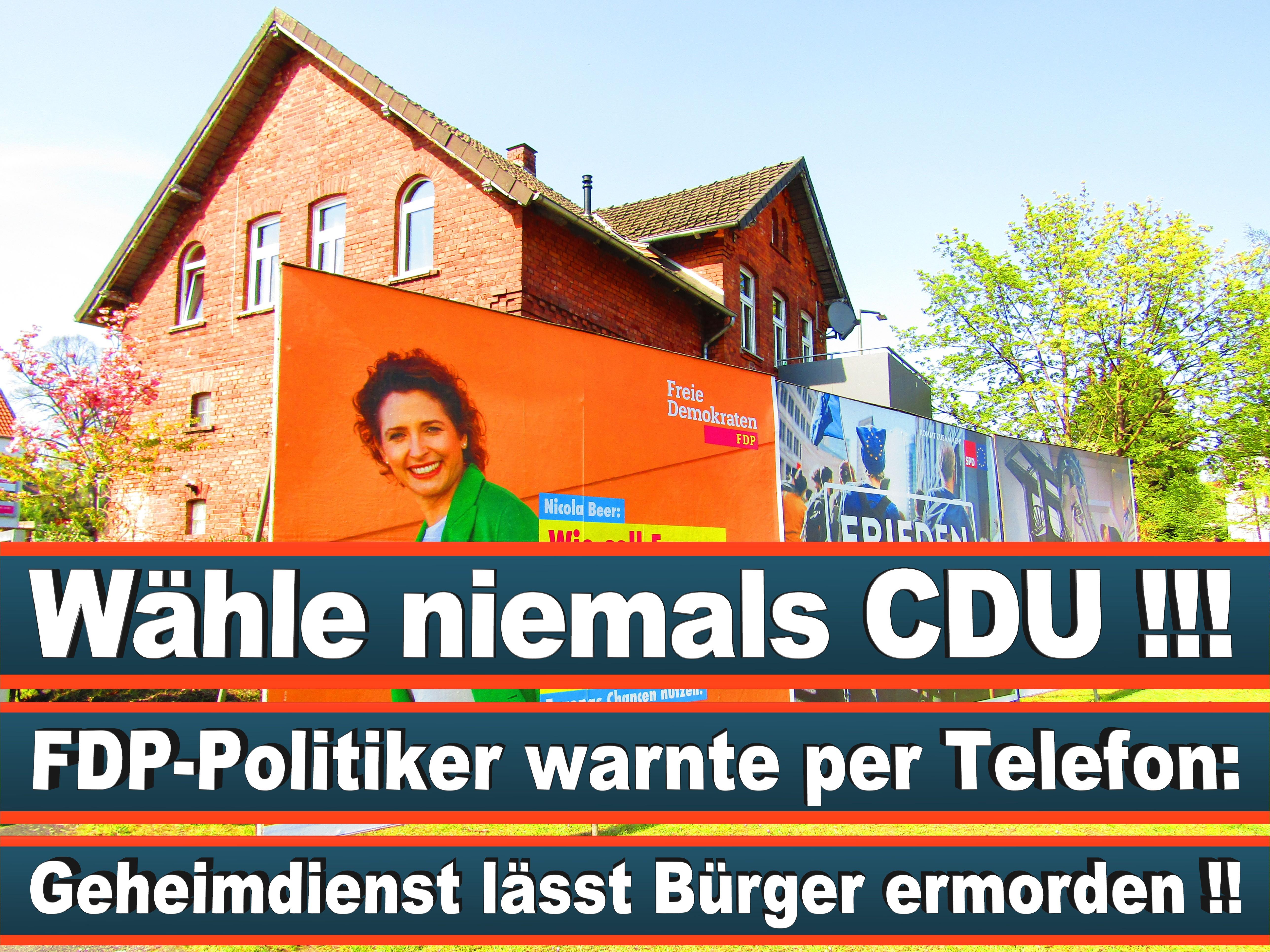 Europawahl Deutschland 26 (138)