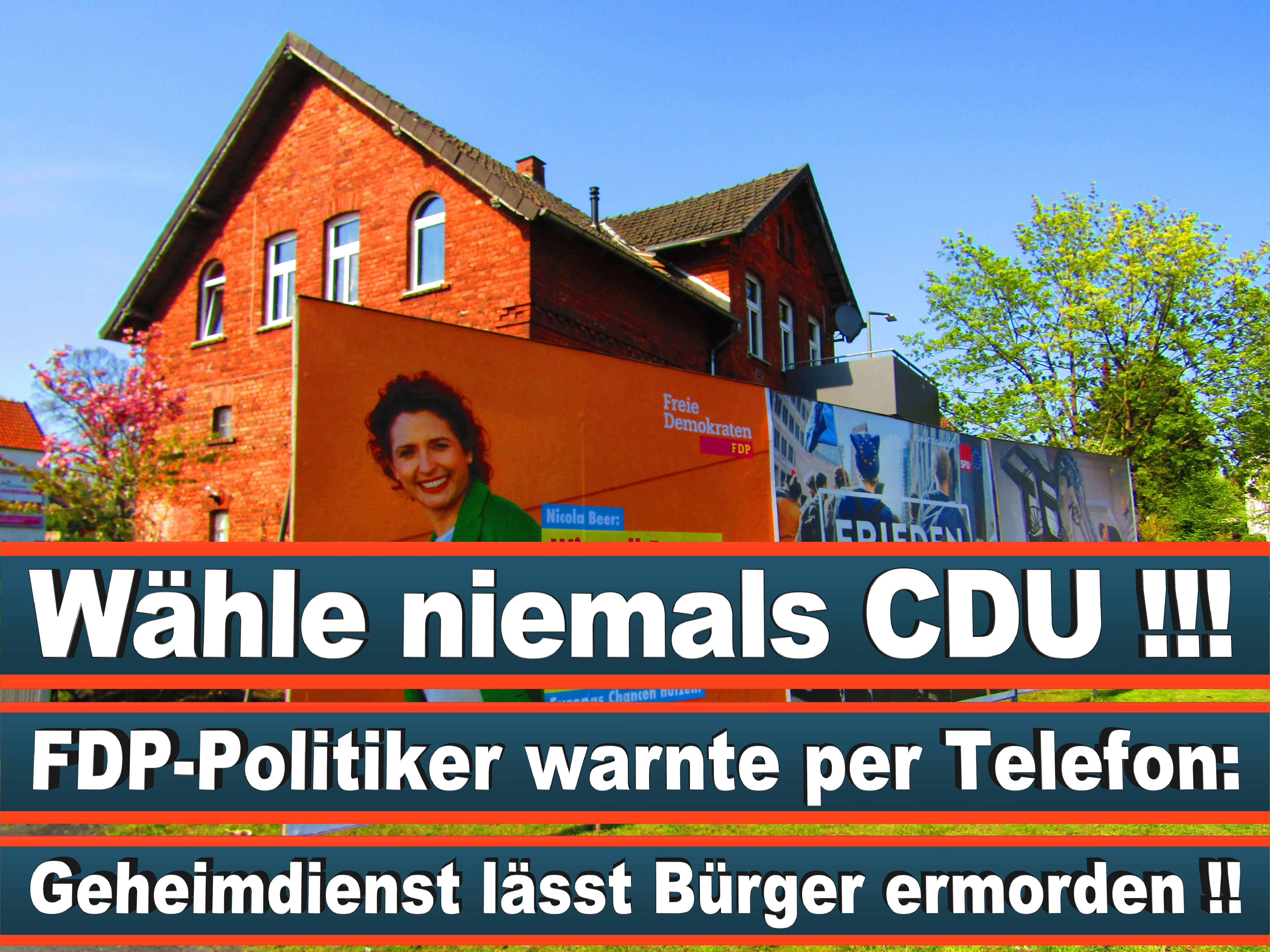 Europawahl Deutschland 26 (139)