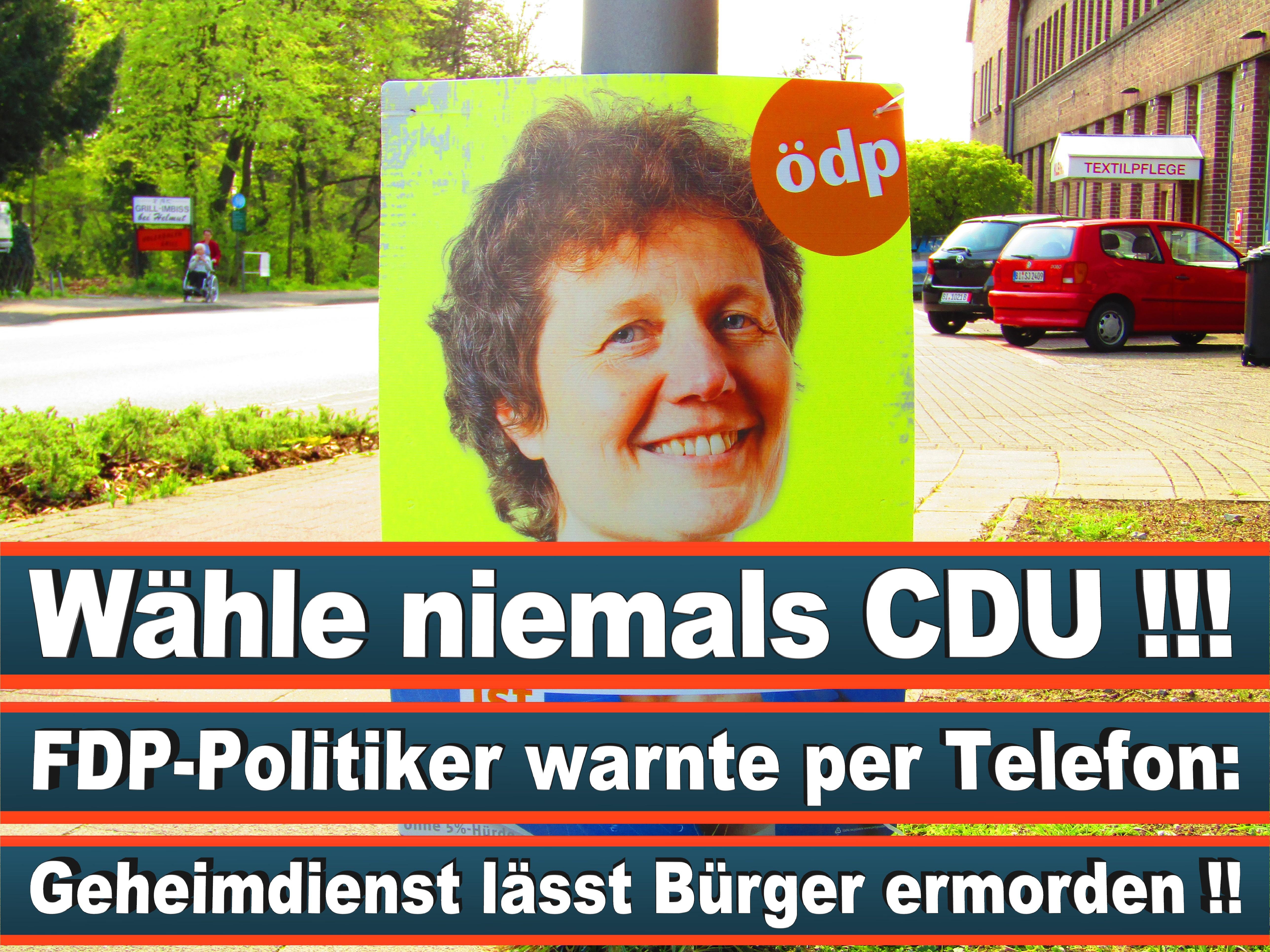Europawahl Deutschland 26 (140)
