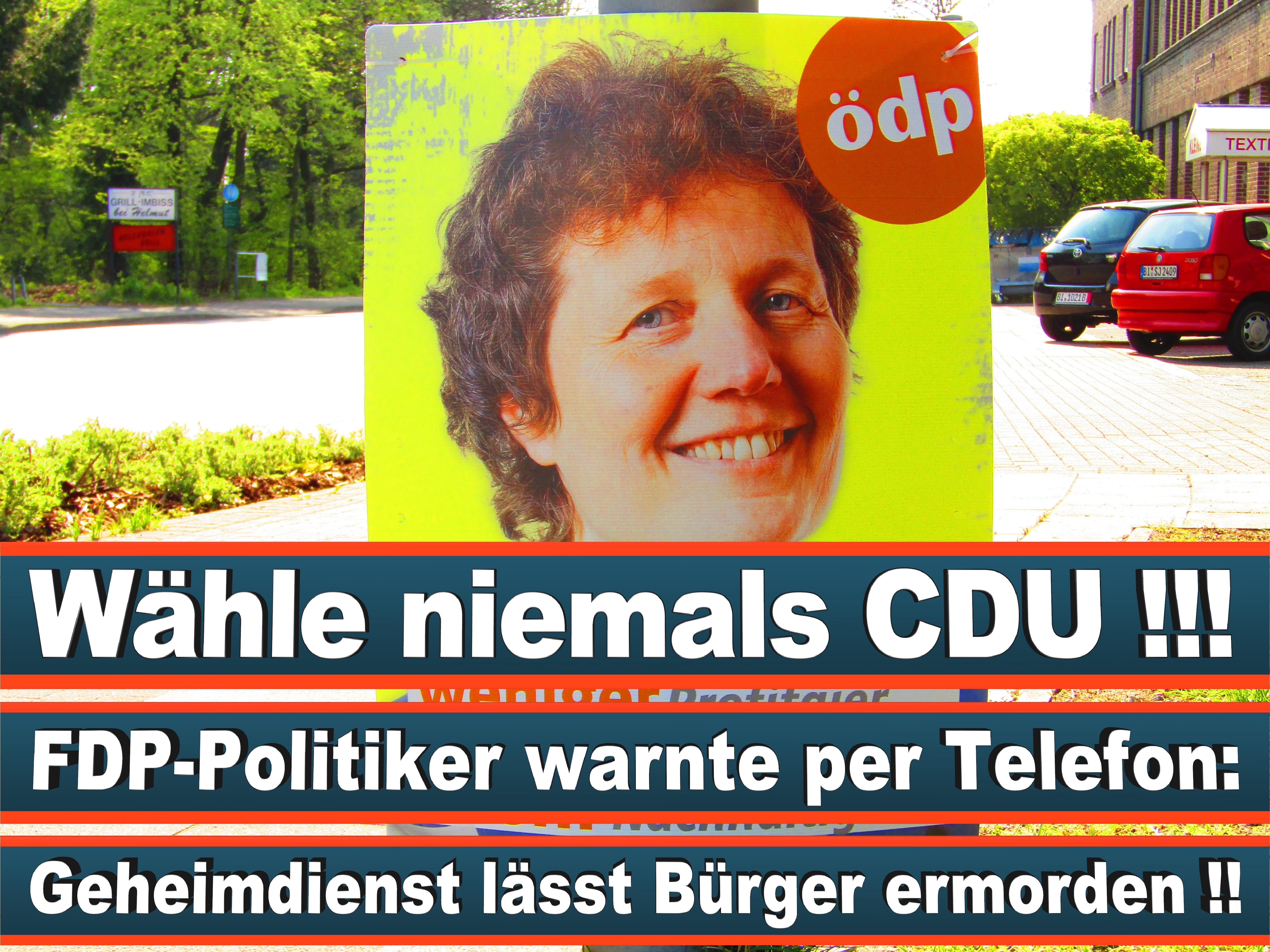 Europawahl Deutschland 26 (141)