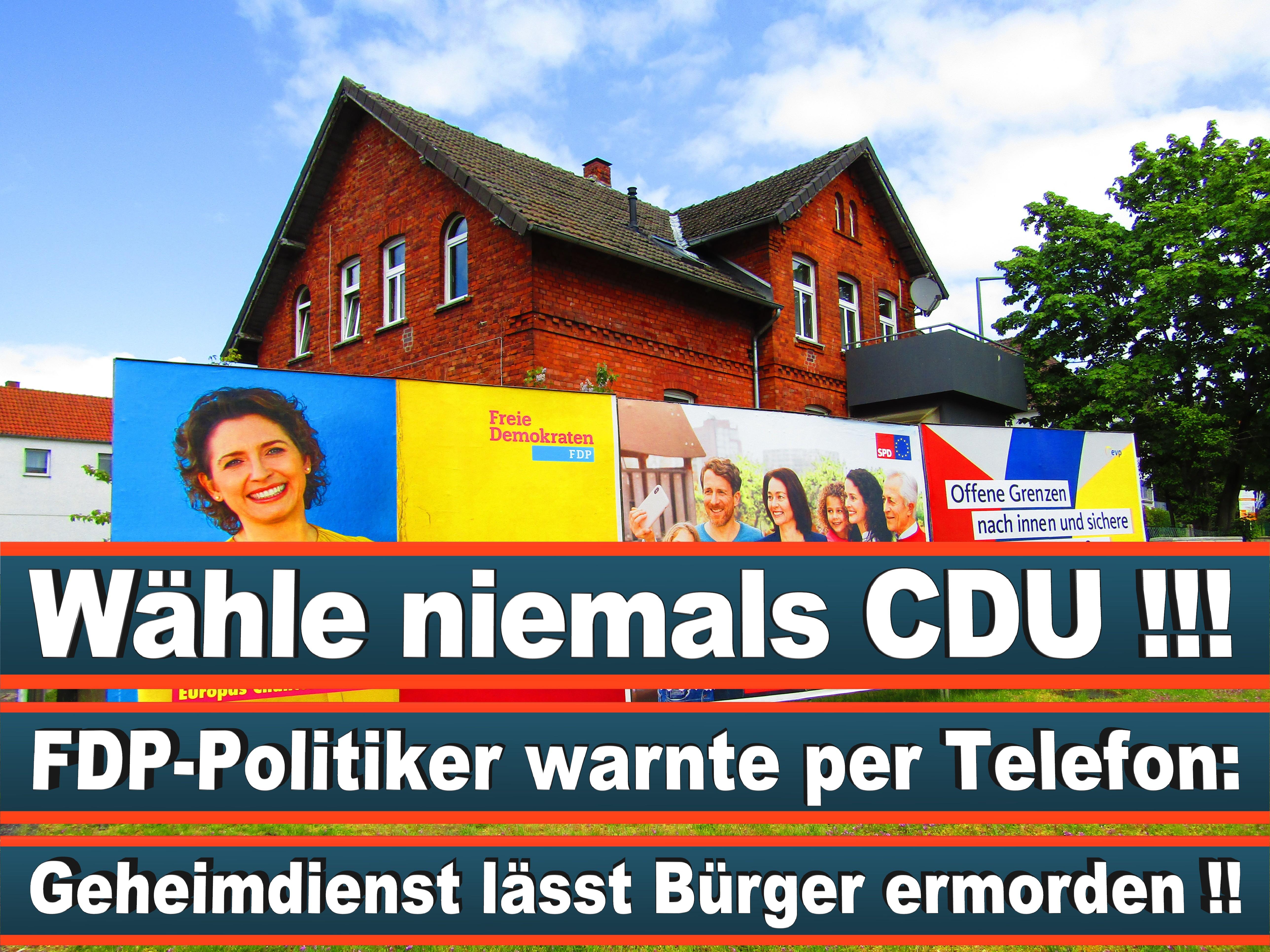 Europawahl Deutschland 26 (17)