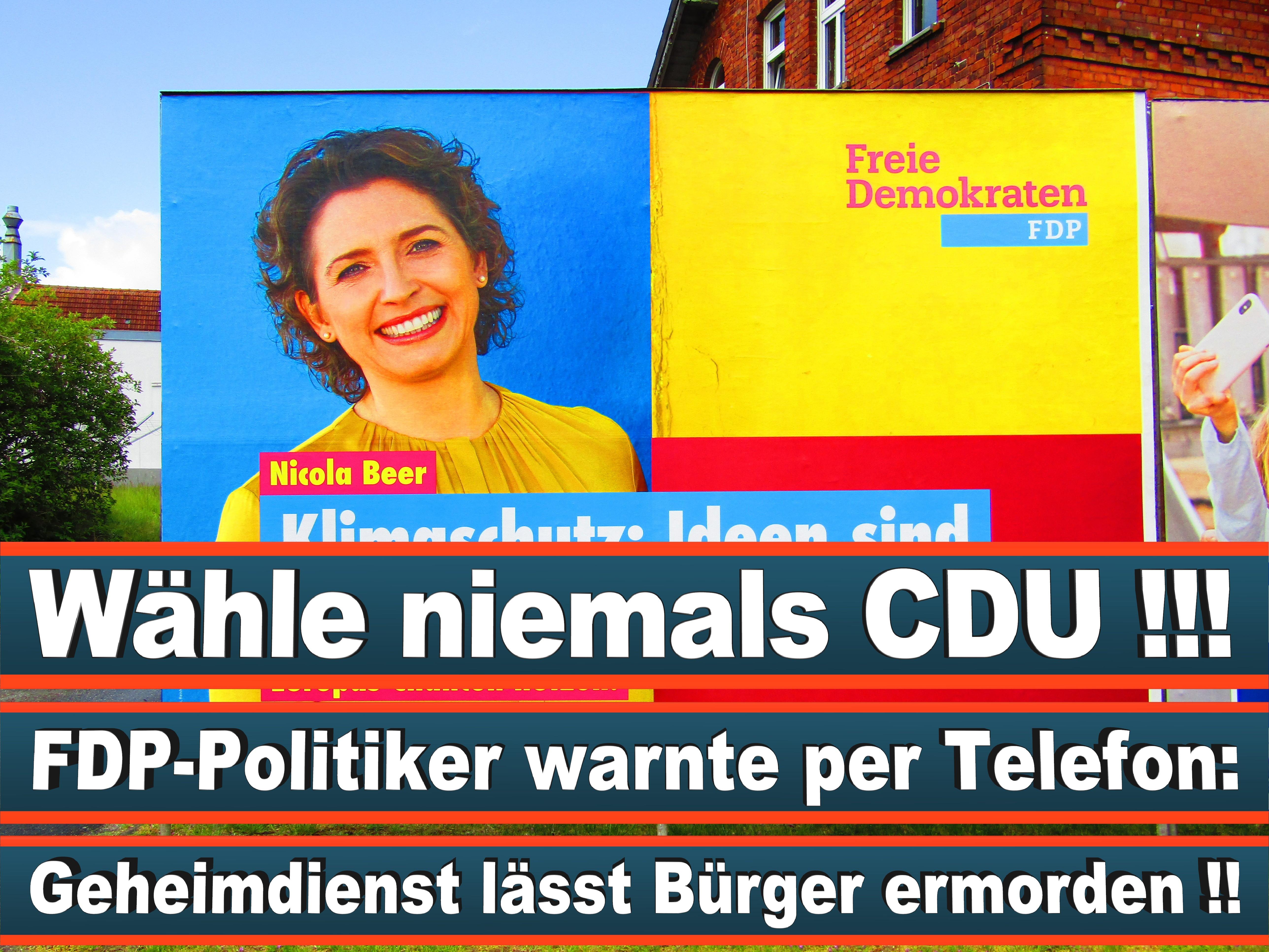 Europawahl Deutschland 26 (19)