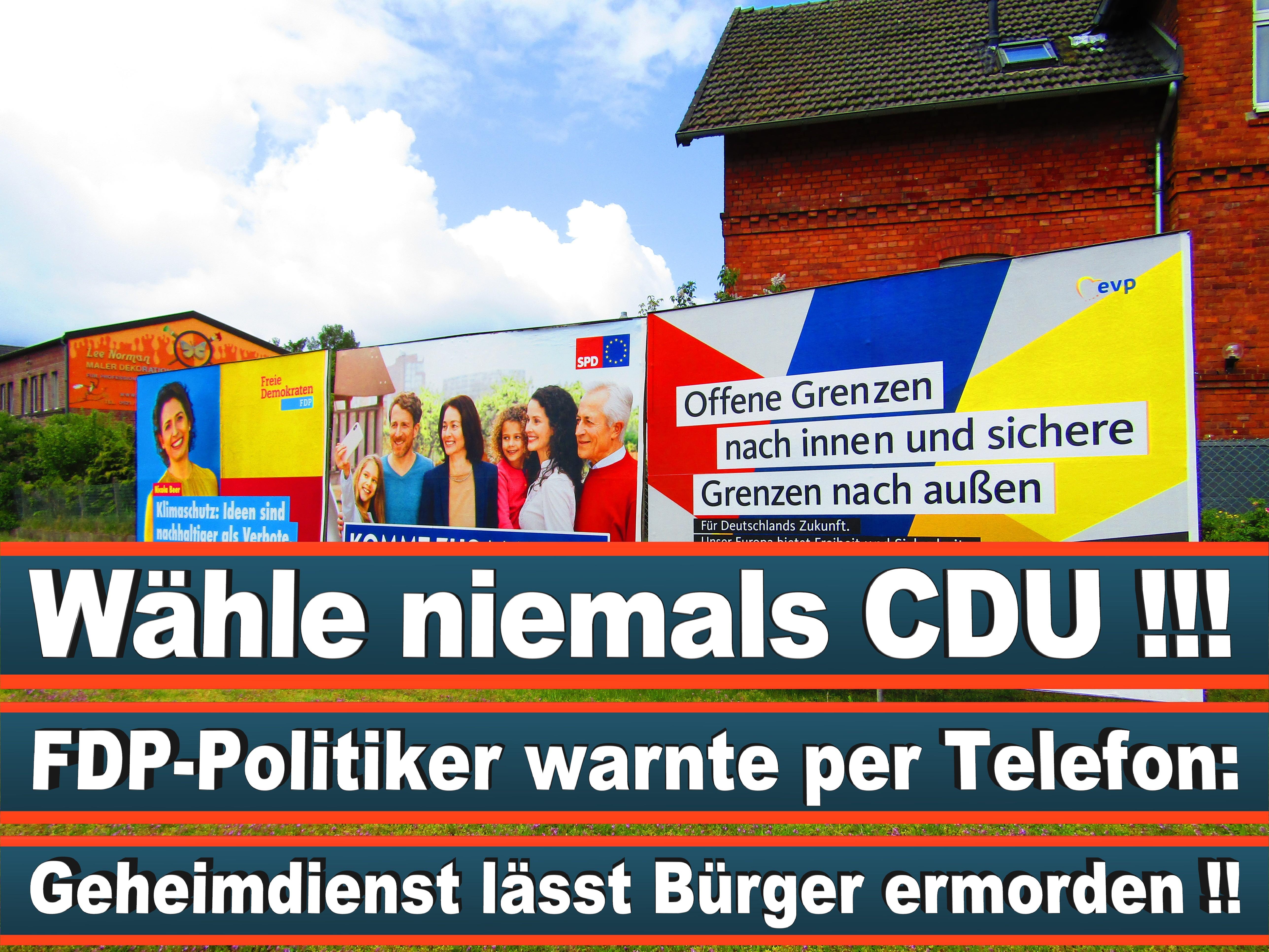 Europawahl Deutschland 26 (24)