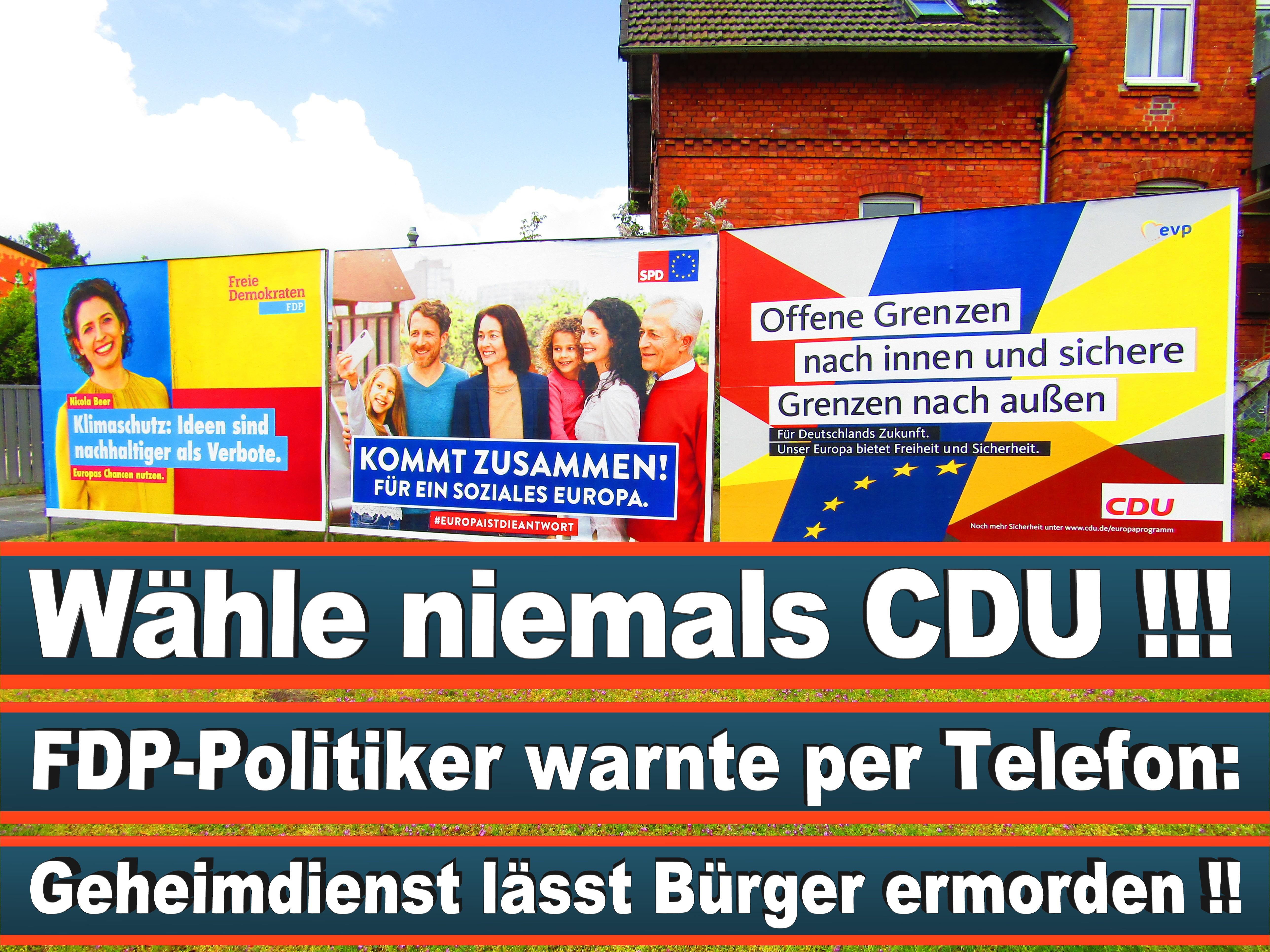 Europawahl Deutschland 26 (25)