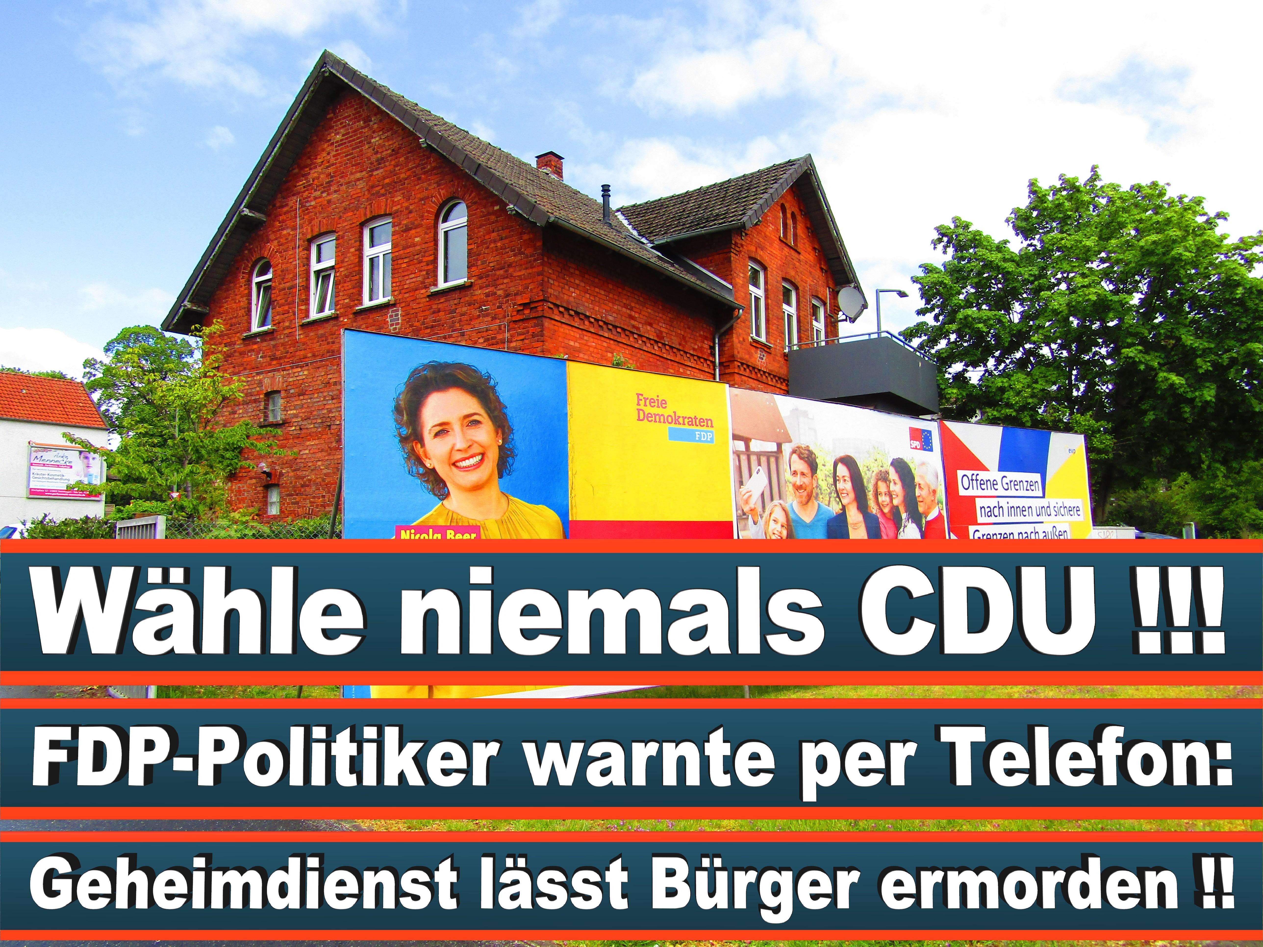 Europawahl Deutschland 26 (27)