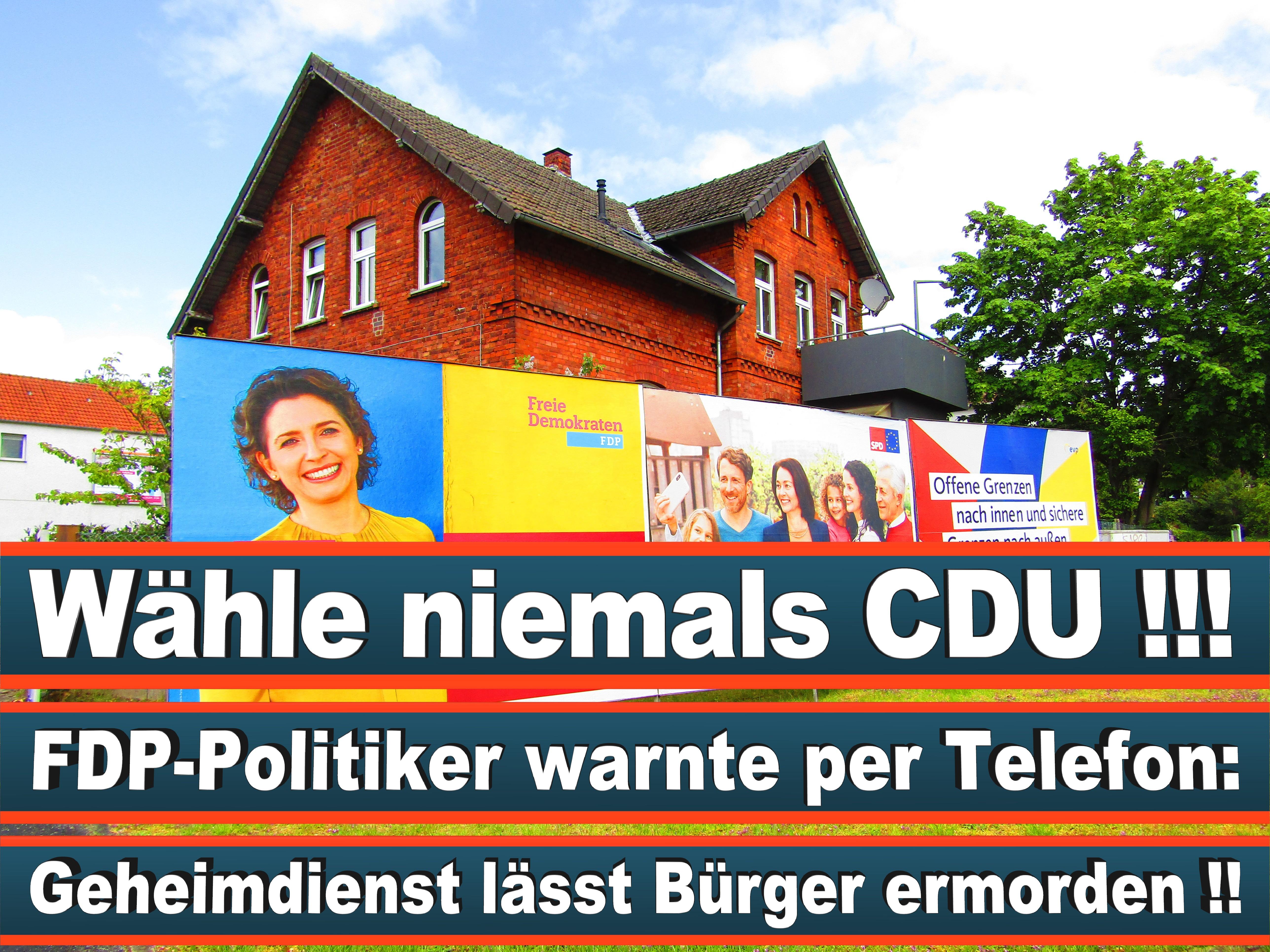 Europawahl Deutschland 26 (28)
