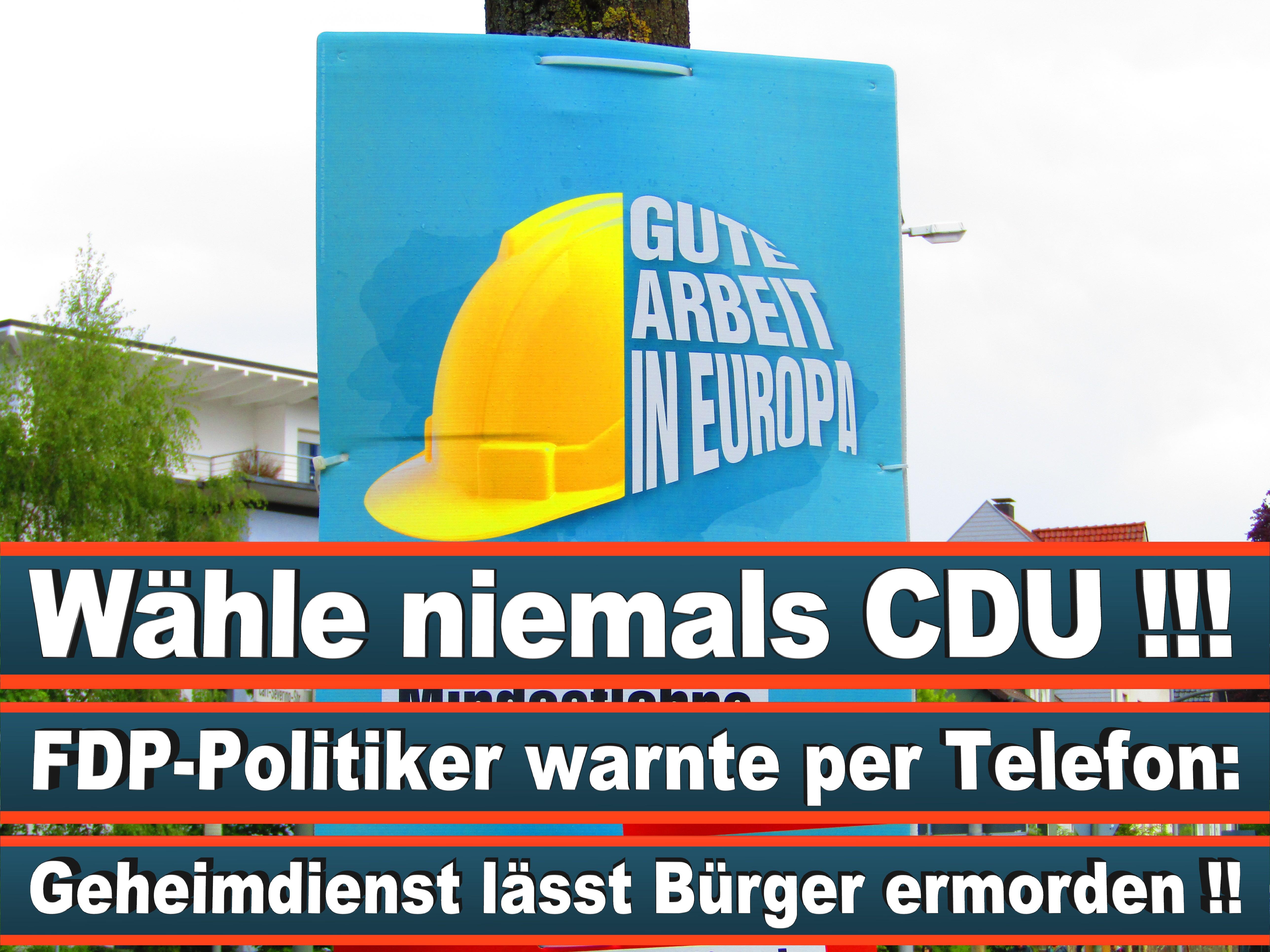 Europawahl Deutschland 26 (41)