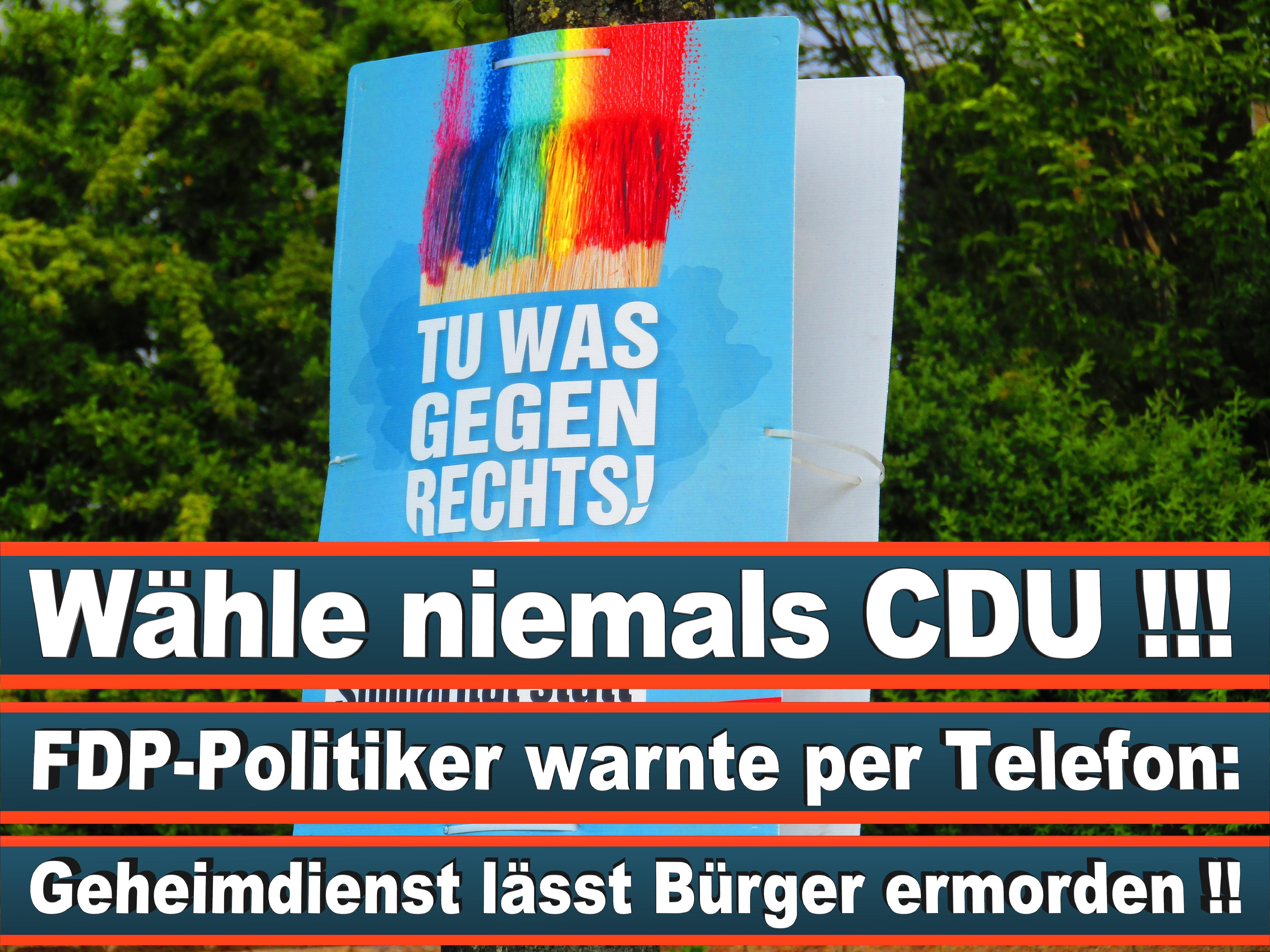 Europawahl Deutschland 26 (48)