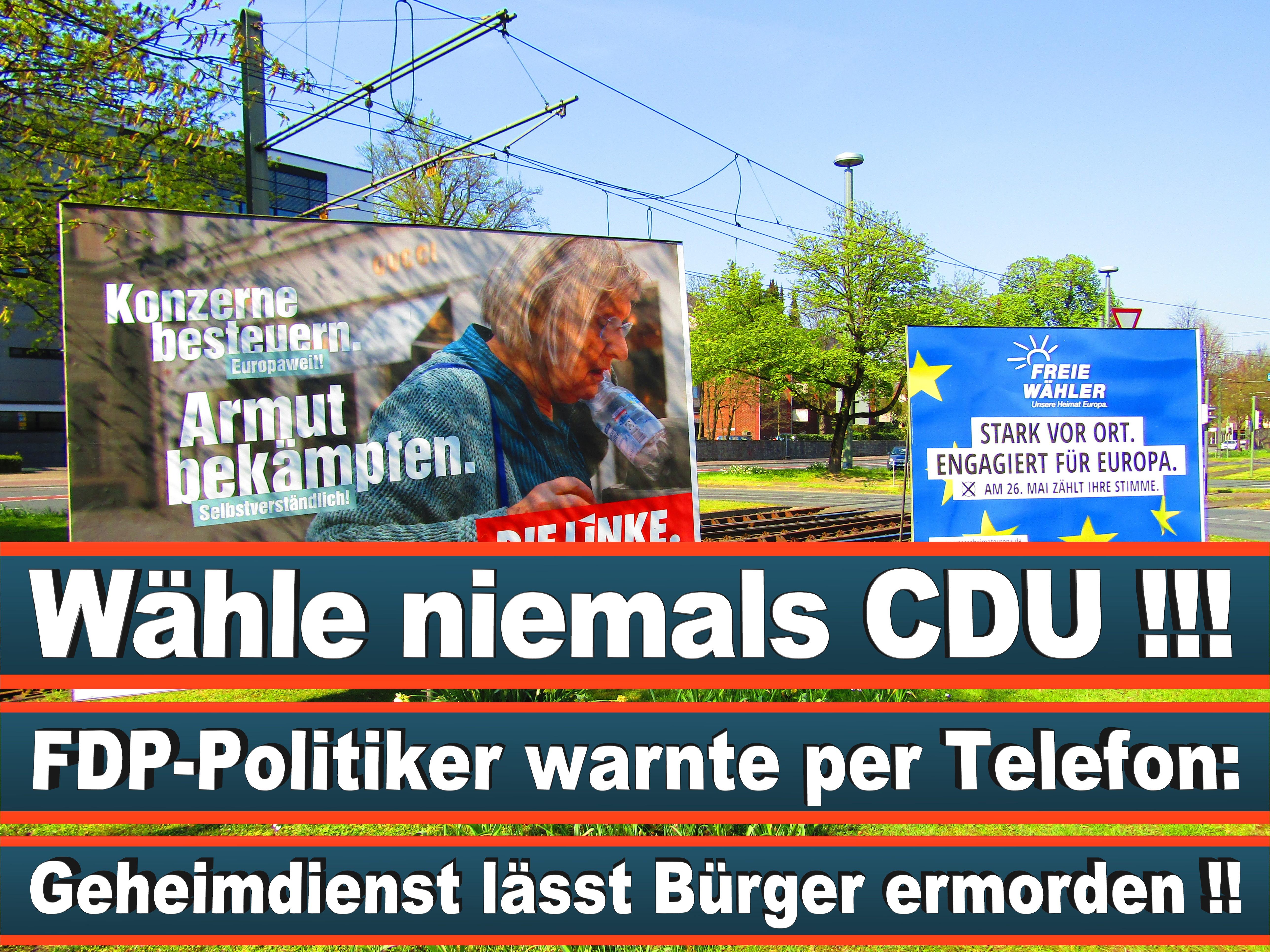 Europawahl Deutschland 26 (50)