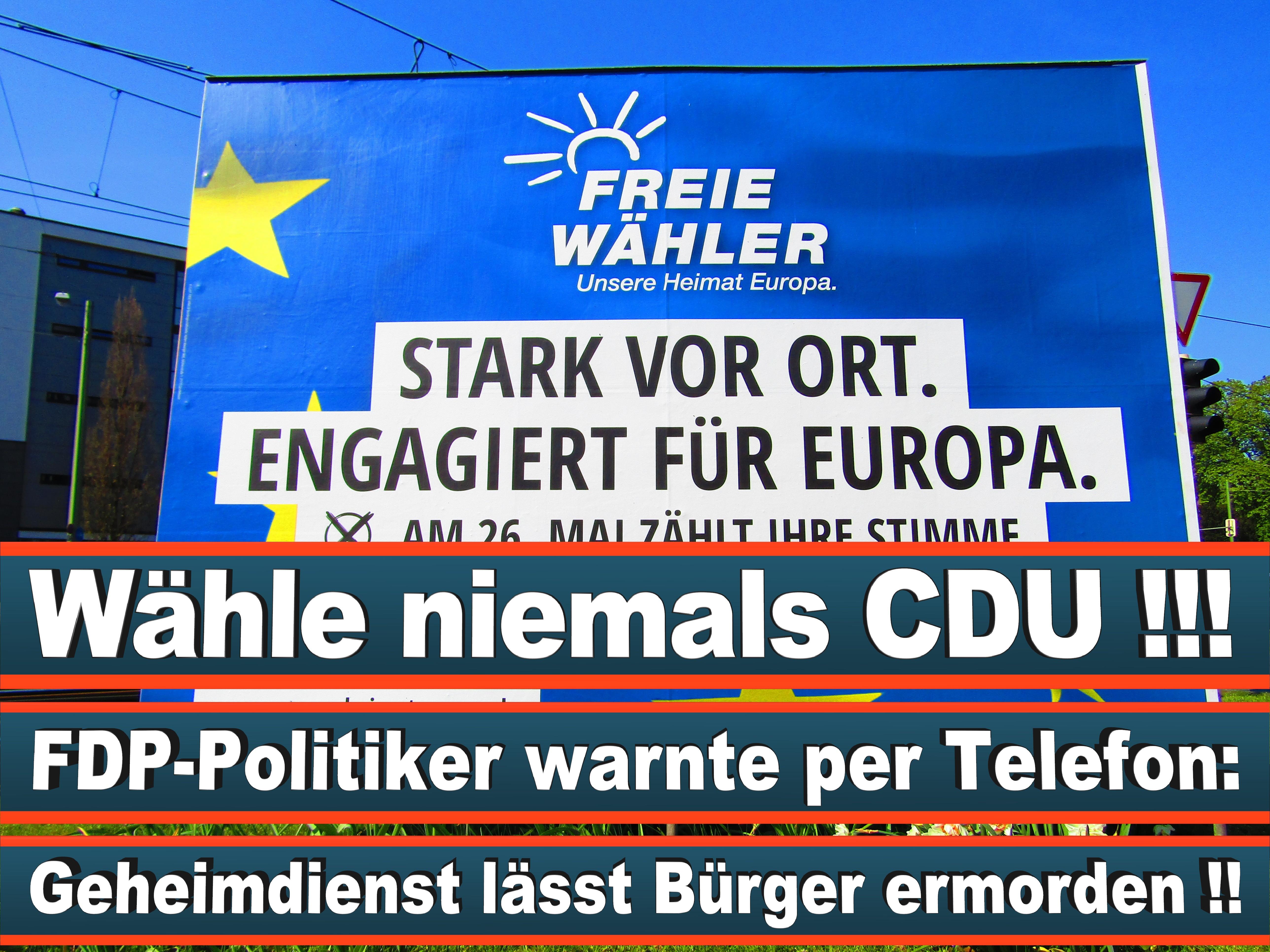 Europawahl Deutschland 26 (52)