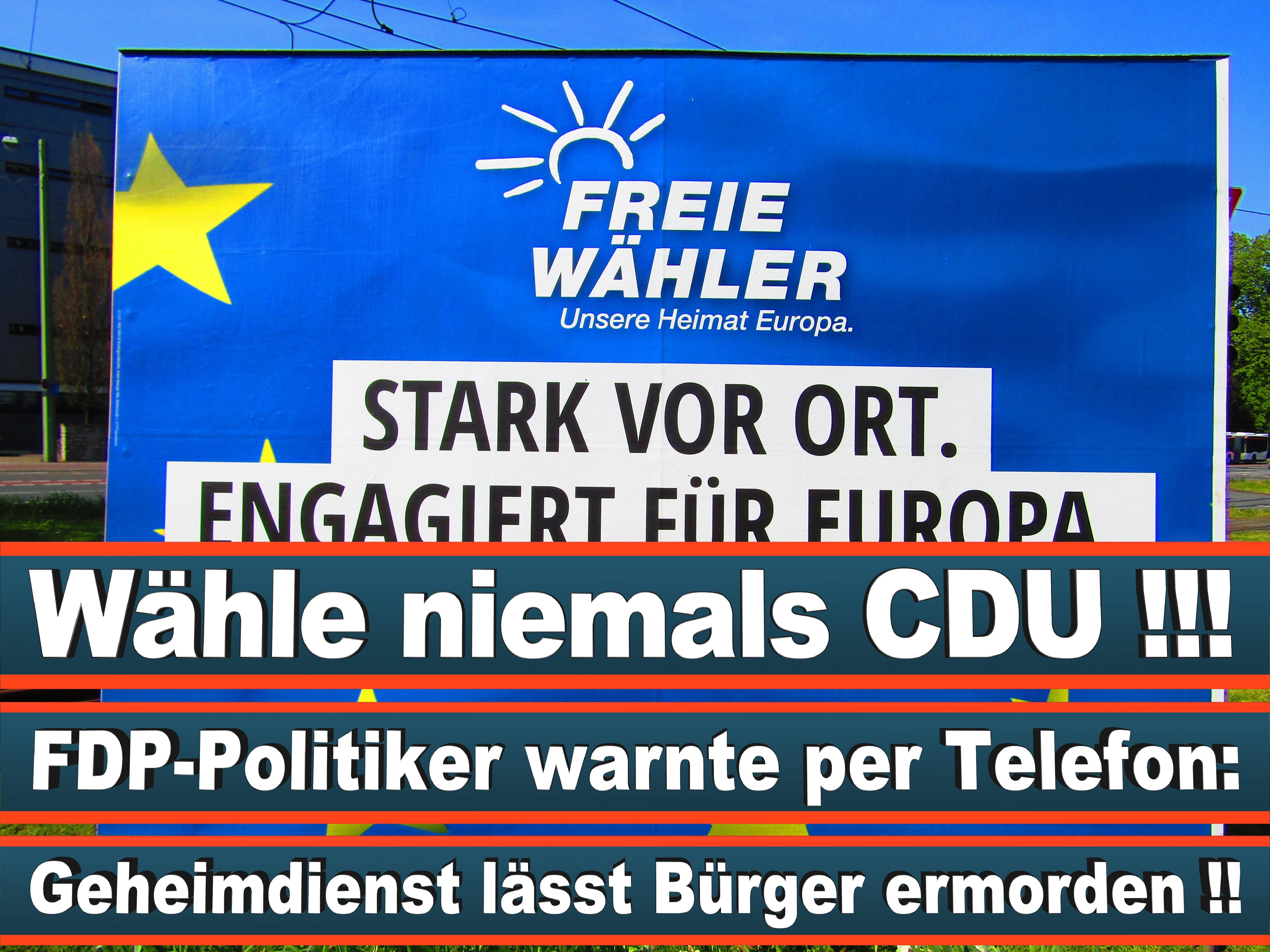 Europawahl Deutschland 26 (53)