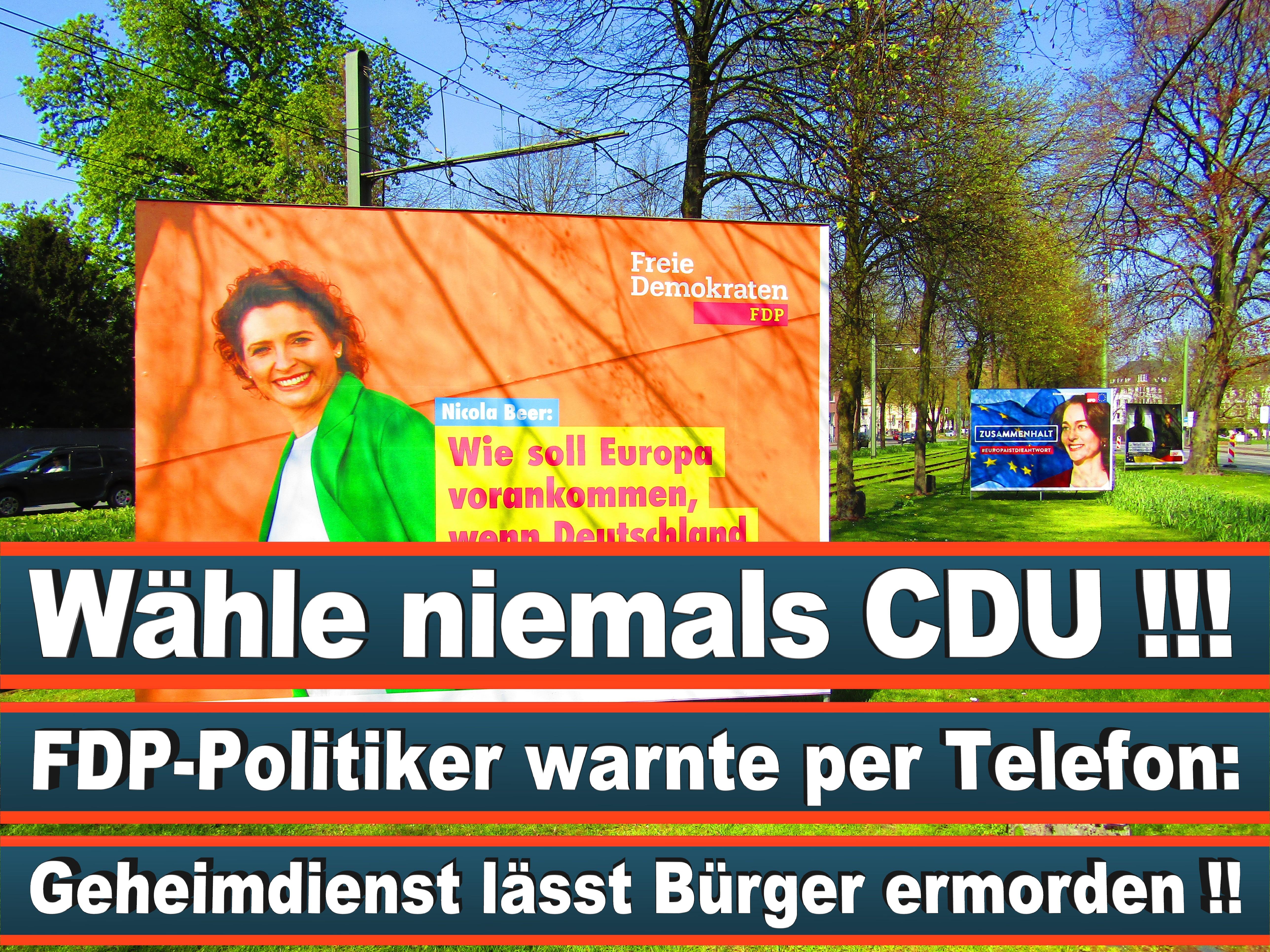 Europawahl Deutschland 26 (54)