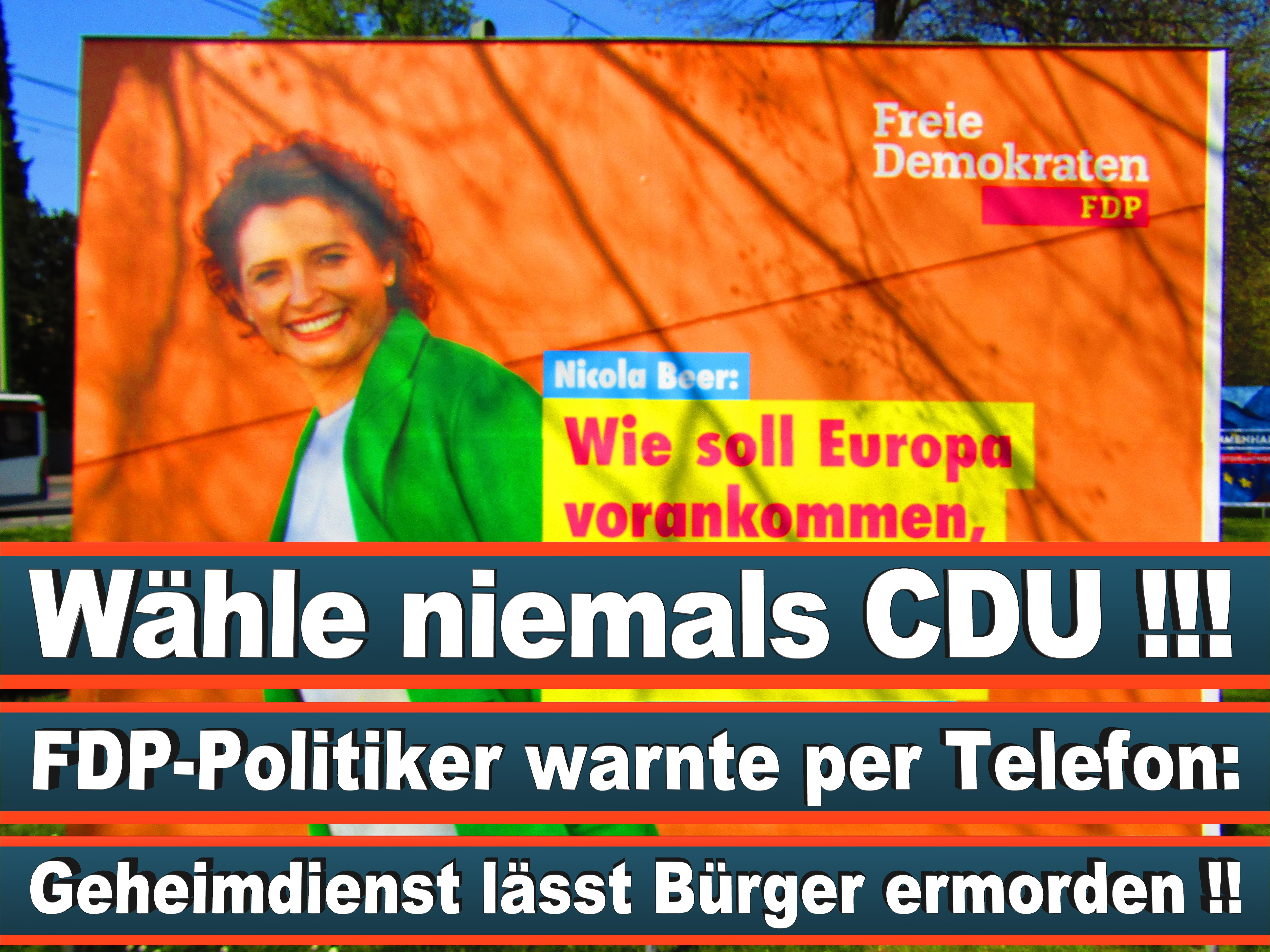 Europawahl Deutschland 26 (57)