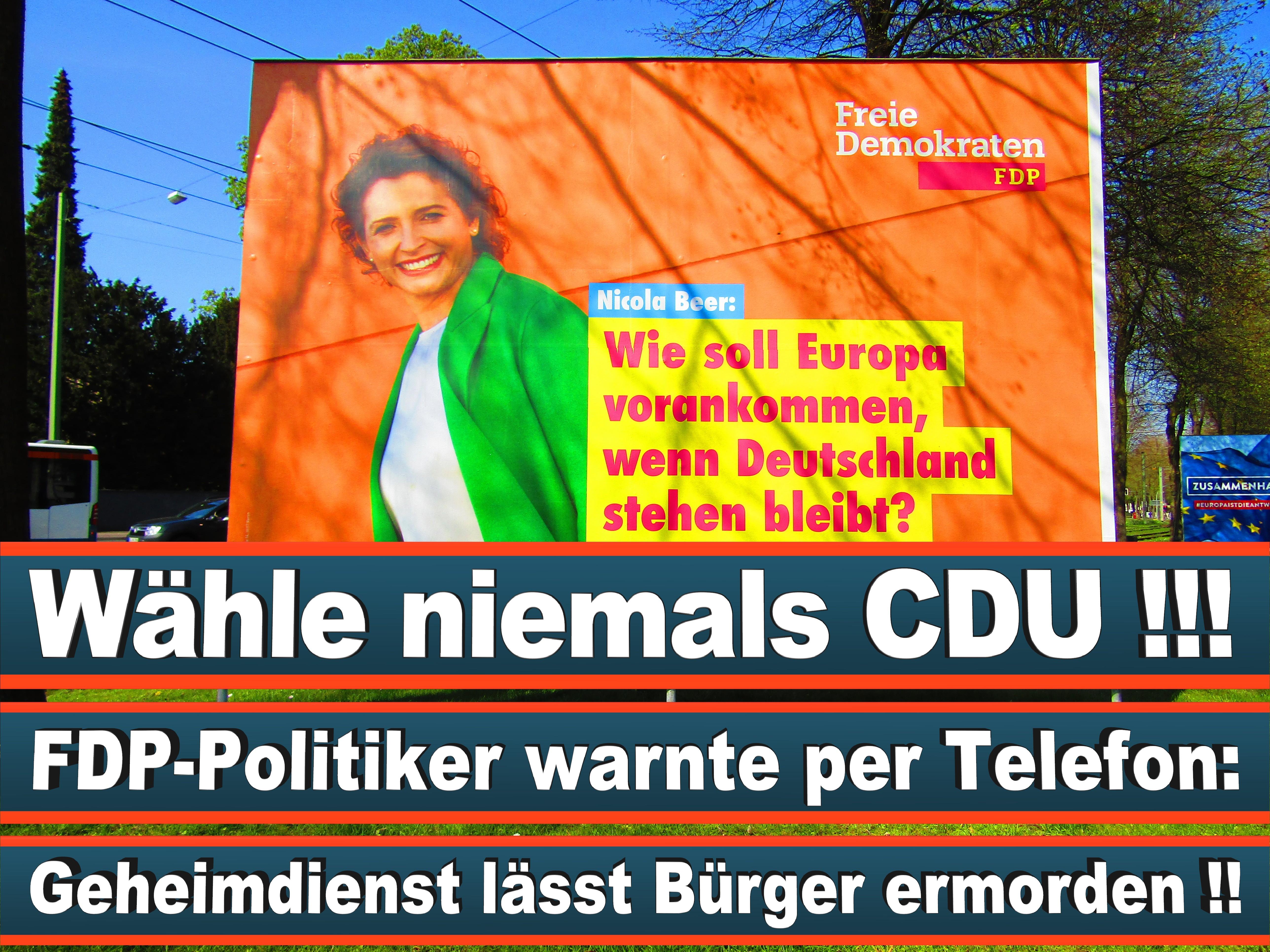 Europawahl Deutschland 26 (58)