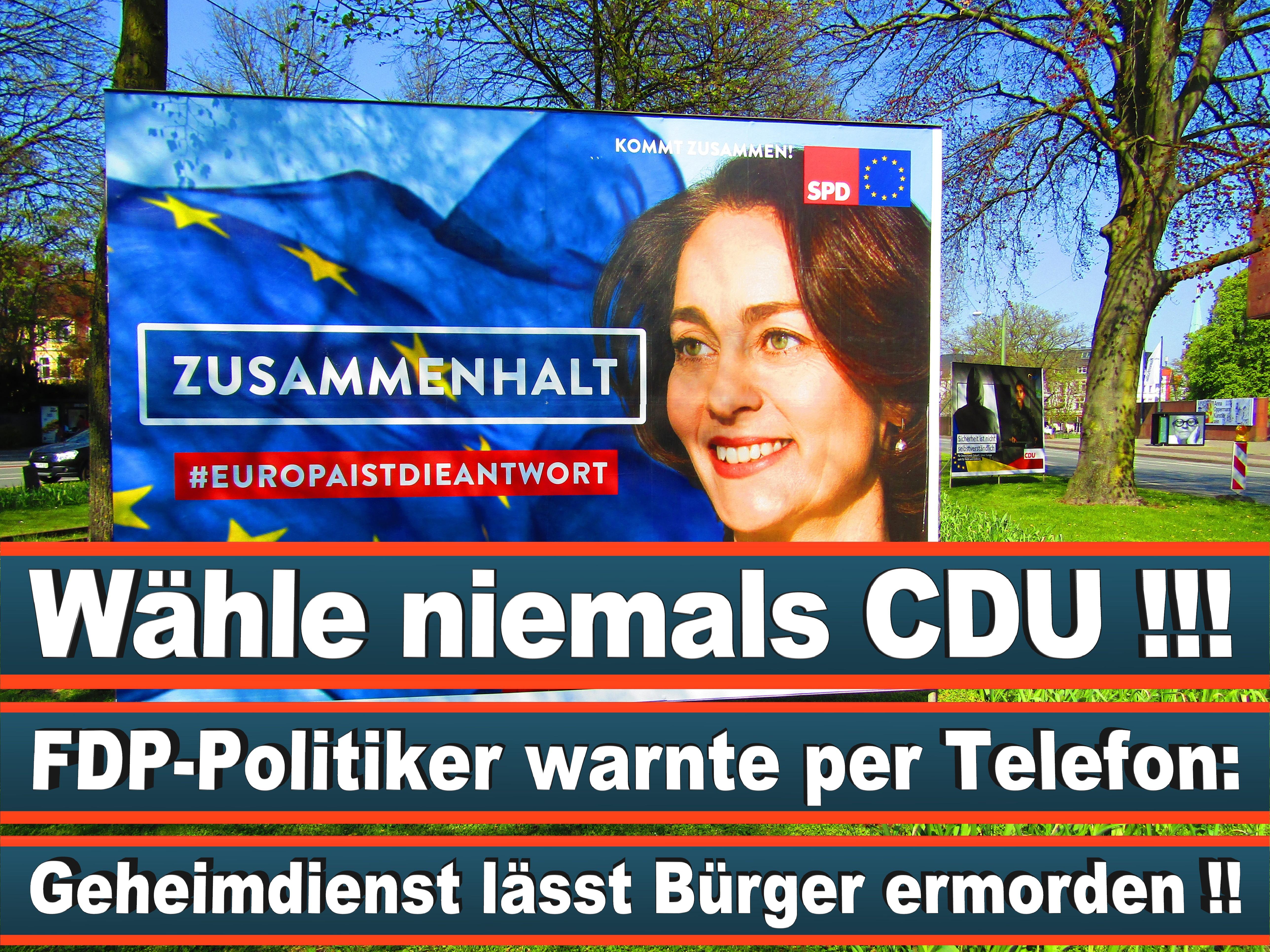 Europawahl Deutschland 26 (59)