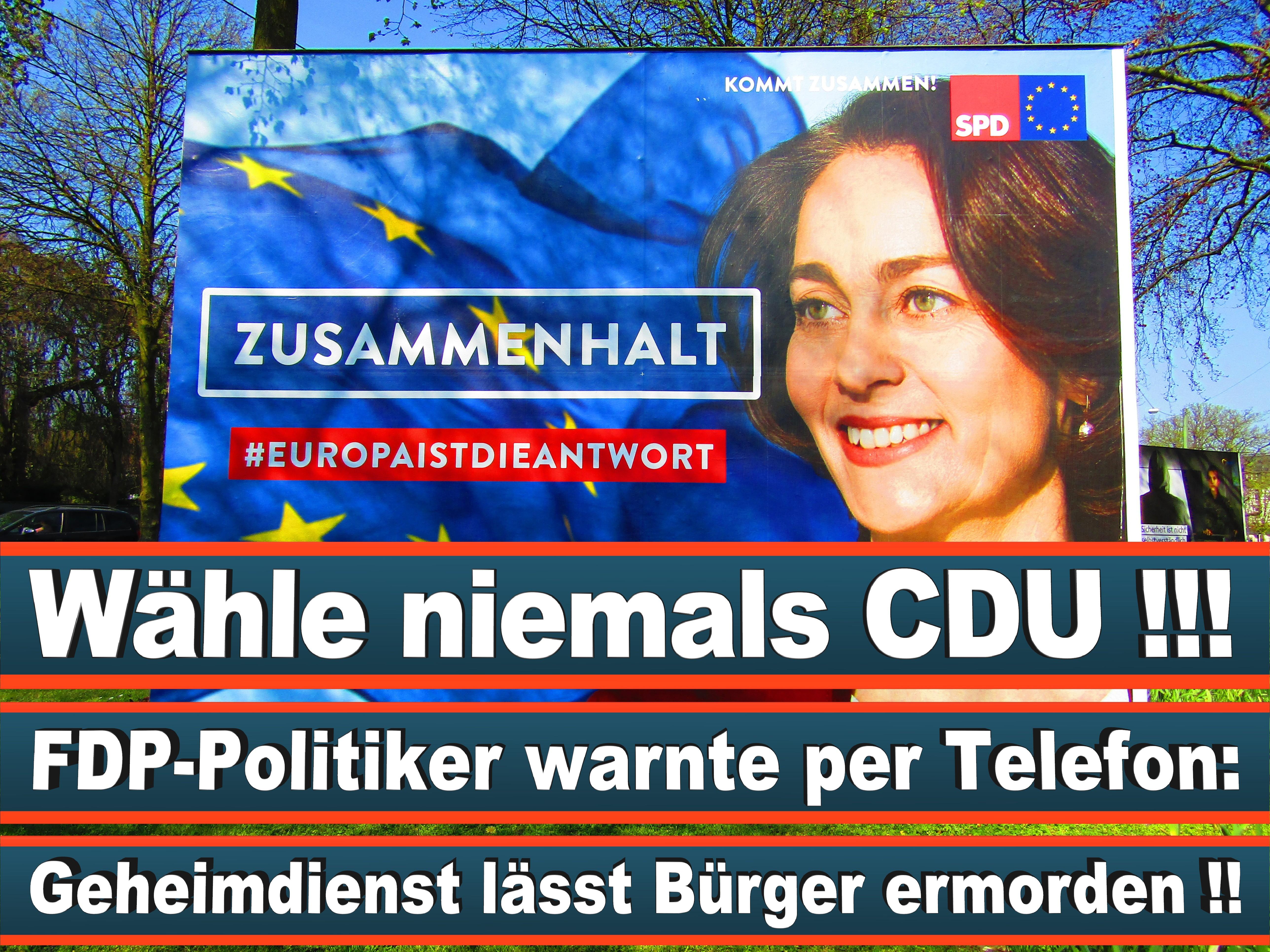 Europawahl Deutschland 26 (60)