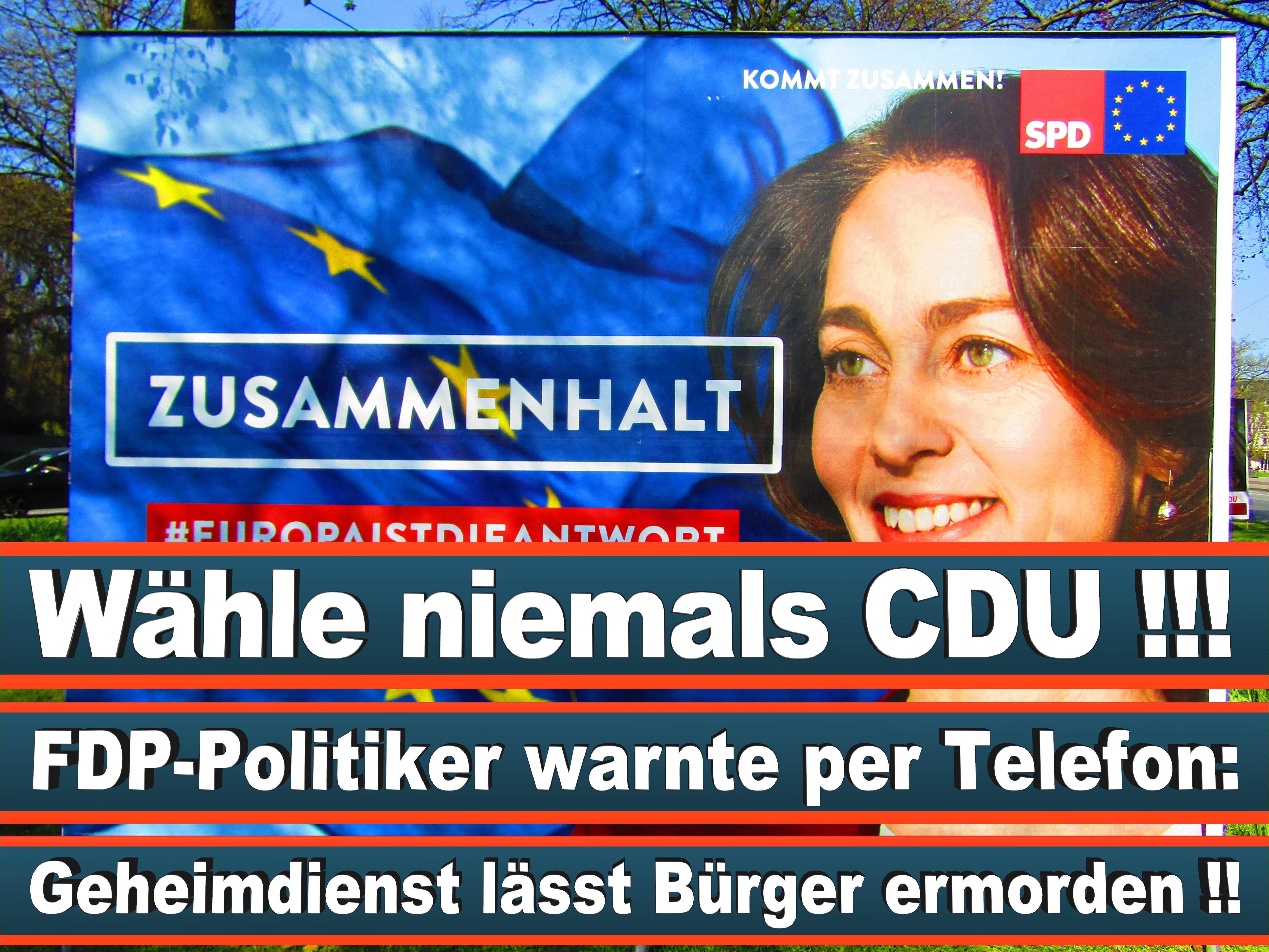 Europawahl Deutschland 26 (61)