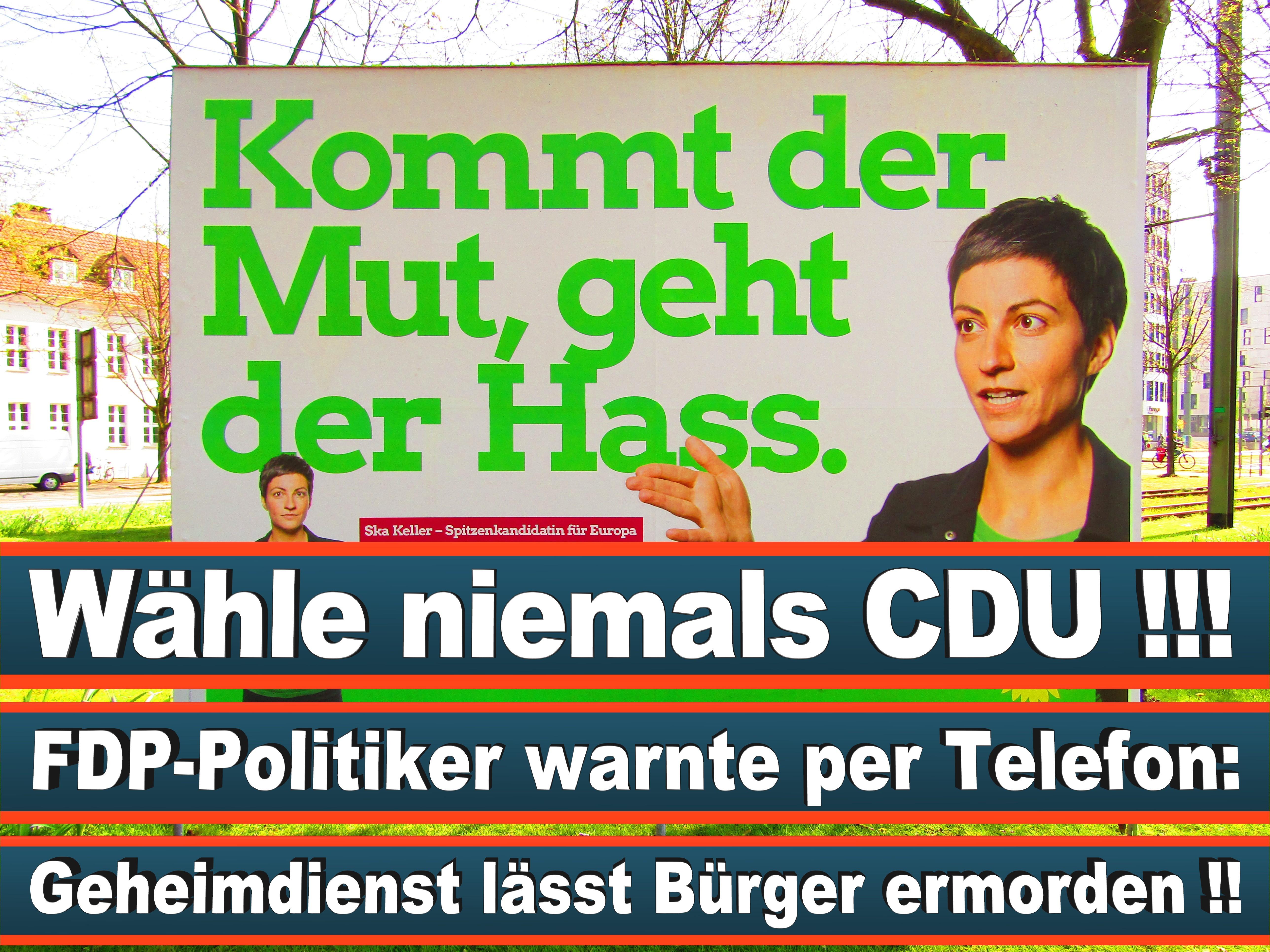 Europawahl Deutschland 26 (69)
