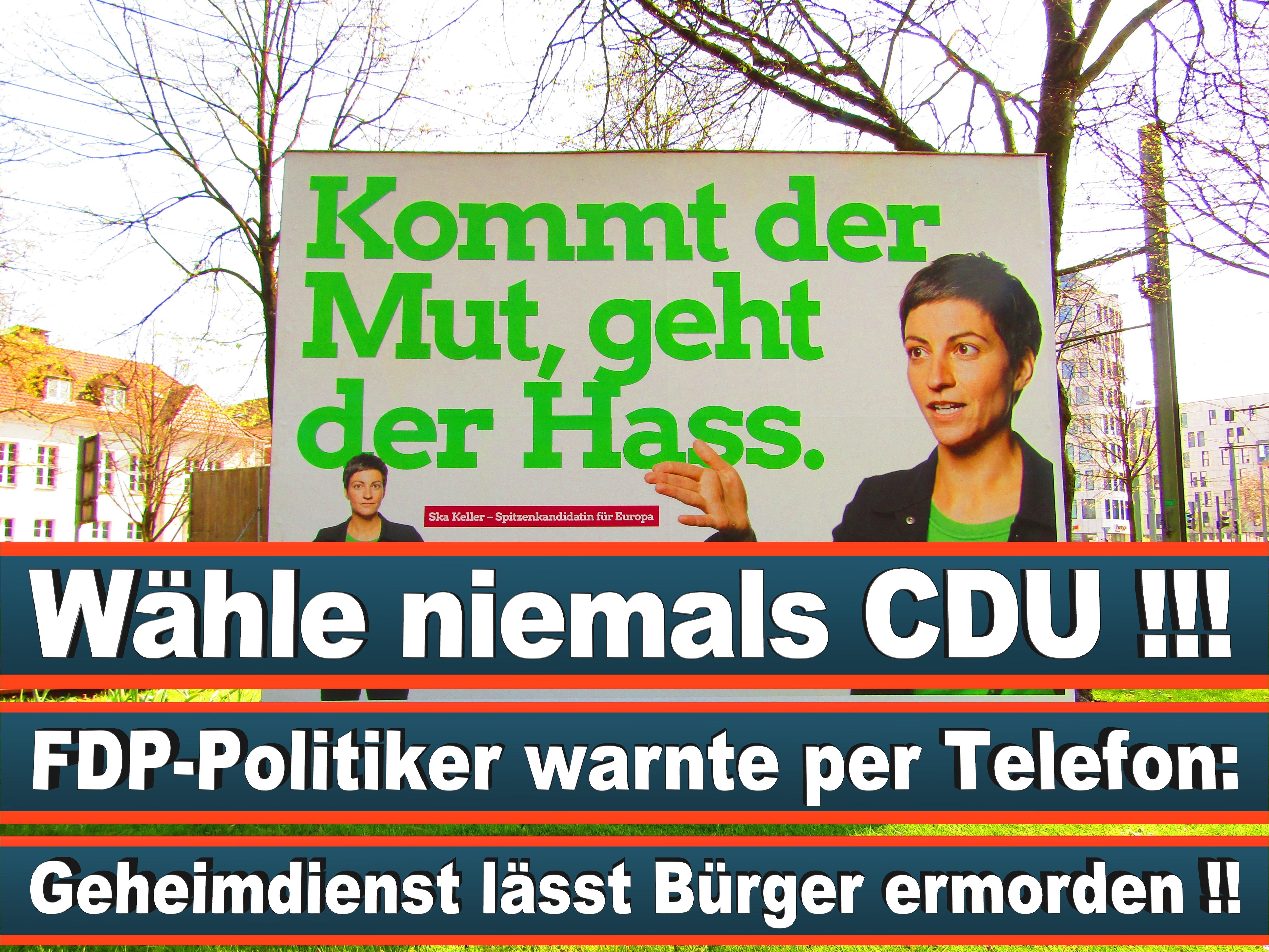 Europawahl Deutschland 26 (70)
