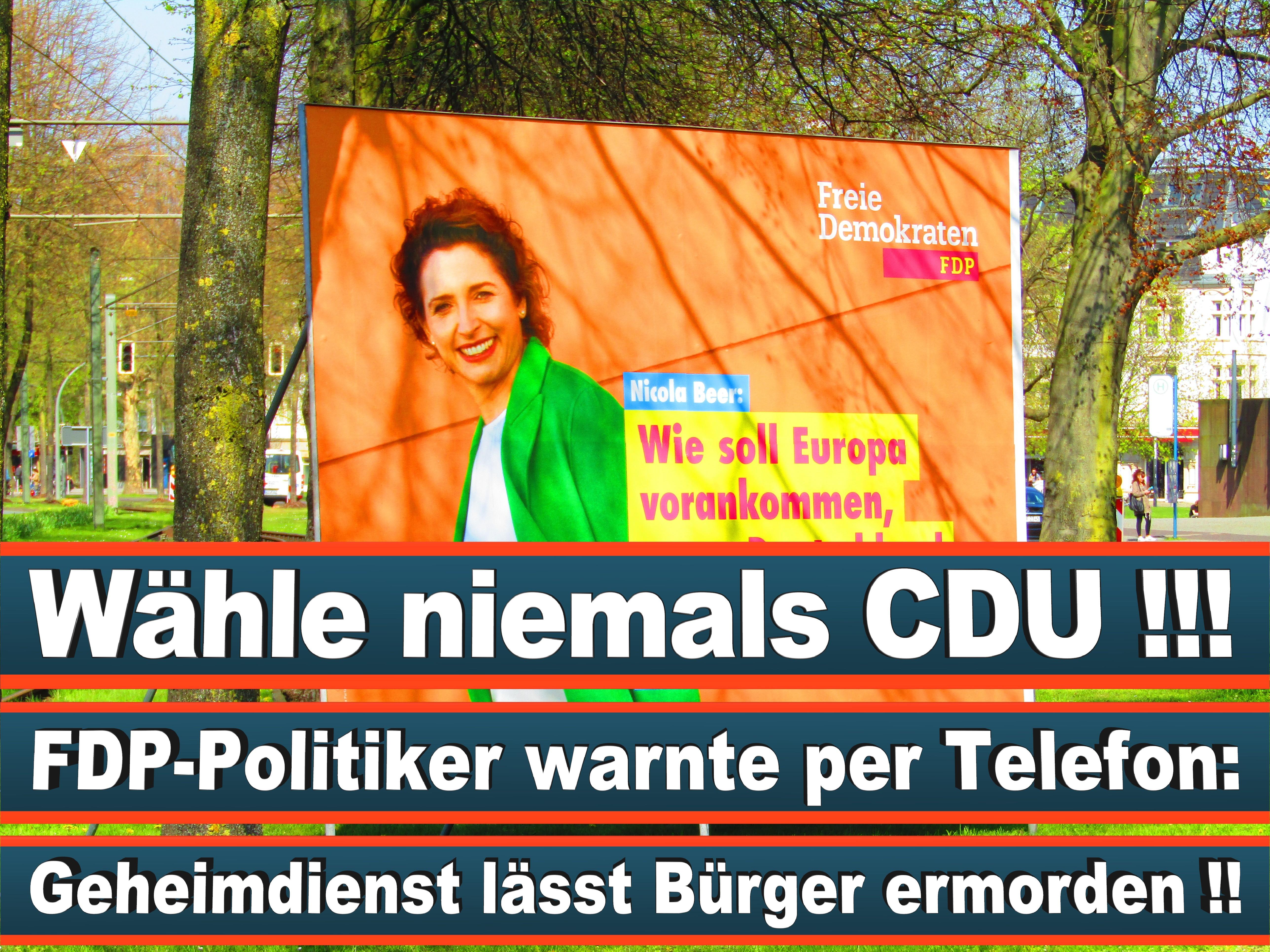 Europawahl Deutschland 26 (75)