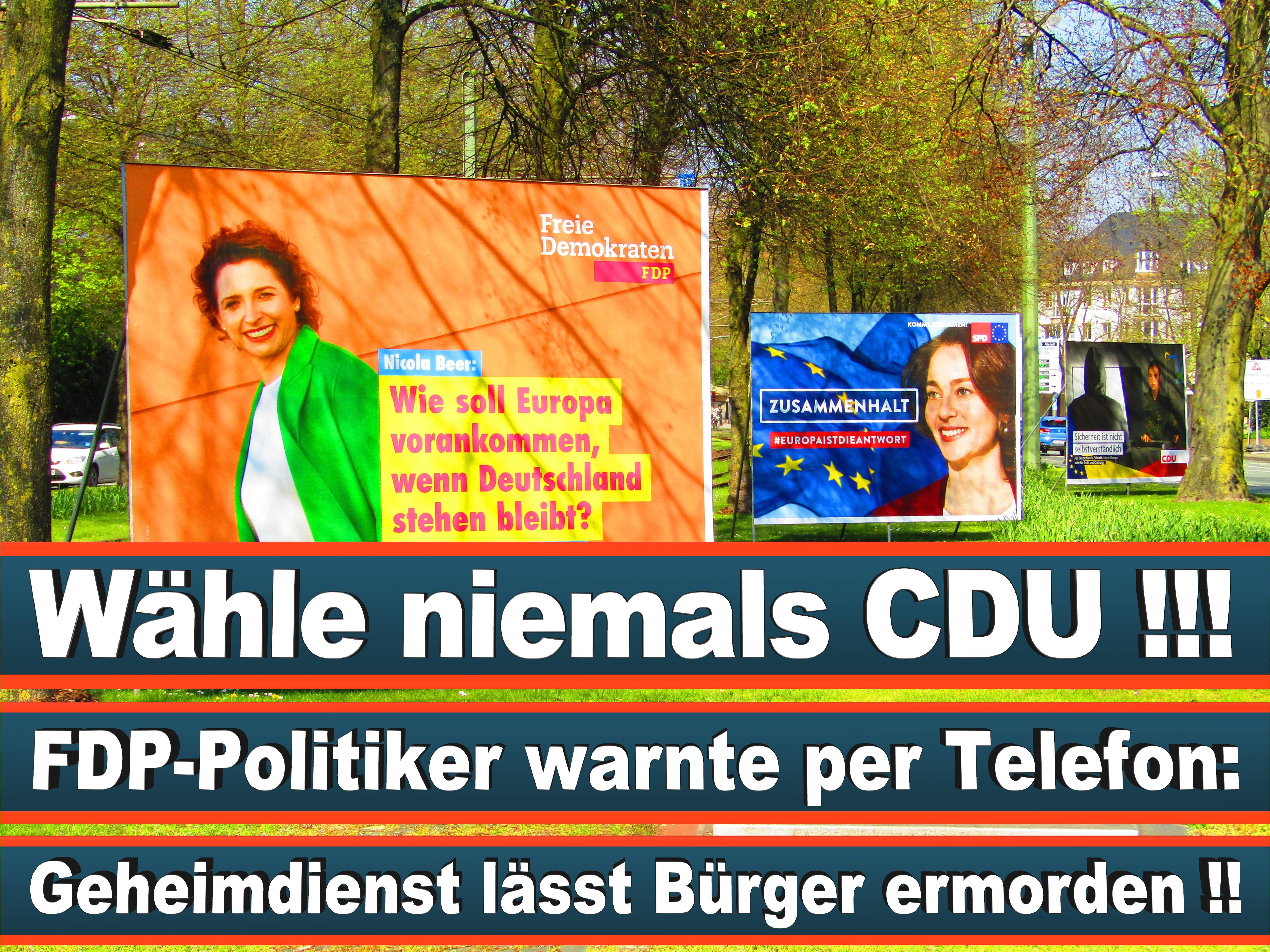 Europawahl Deutschland 26 (77)