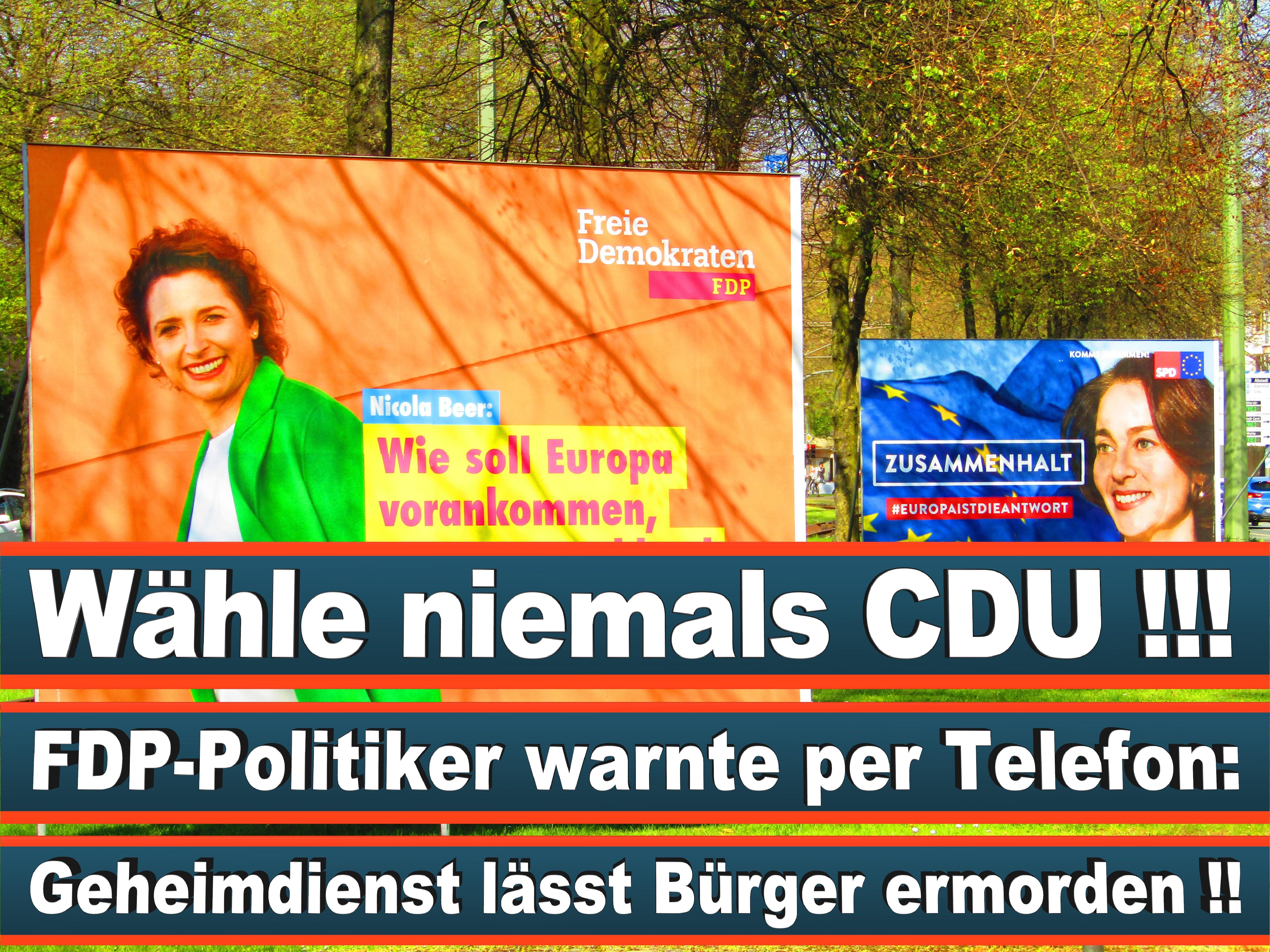 Europawahl Deutschland 26 (78)