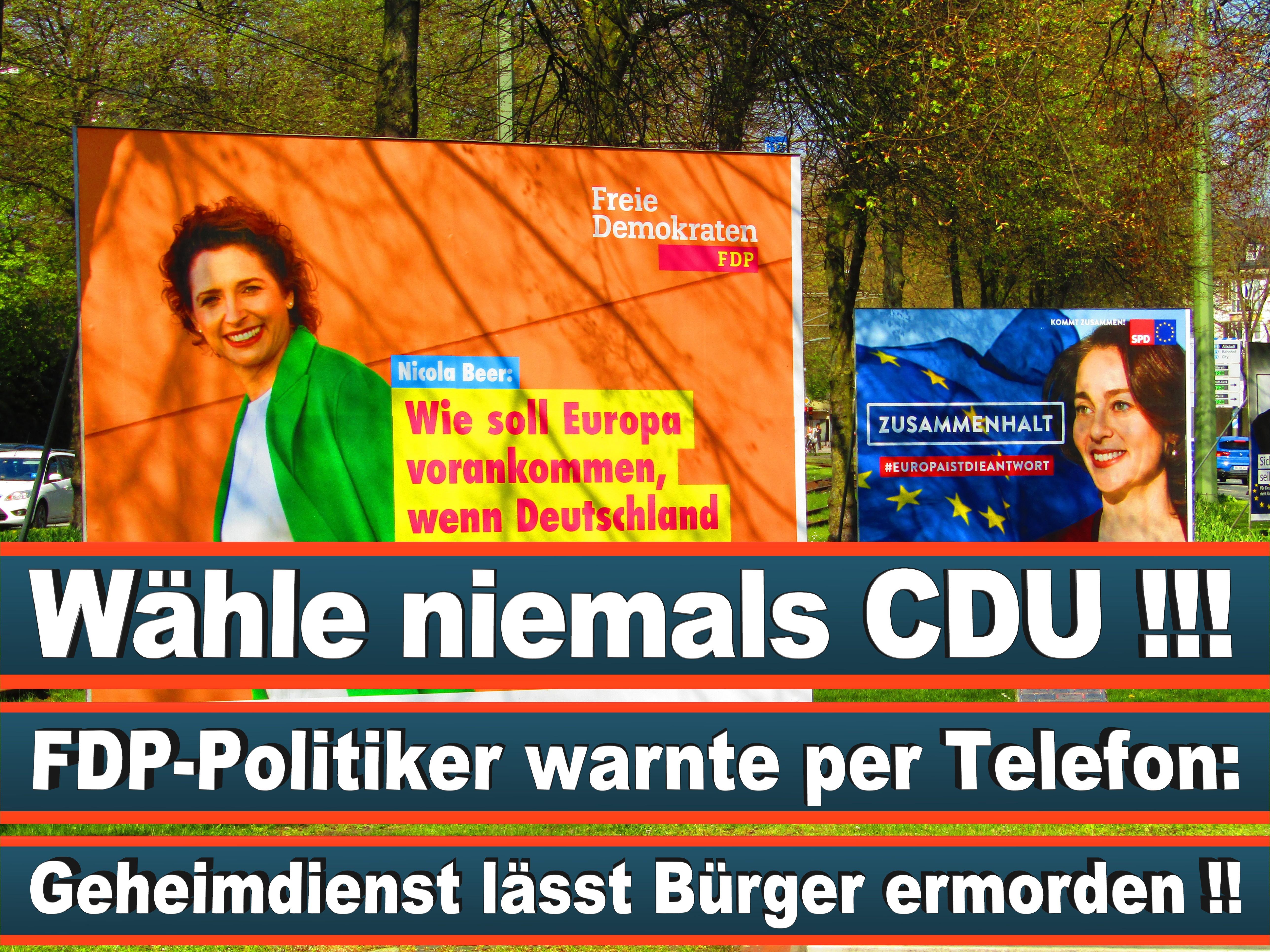 Europawahl Deutschland 26 (79)