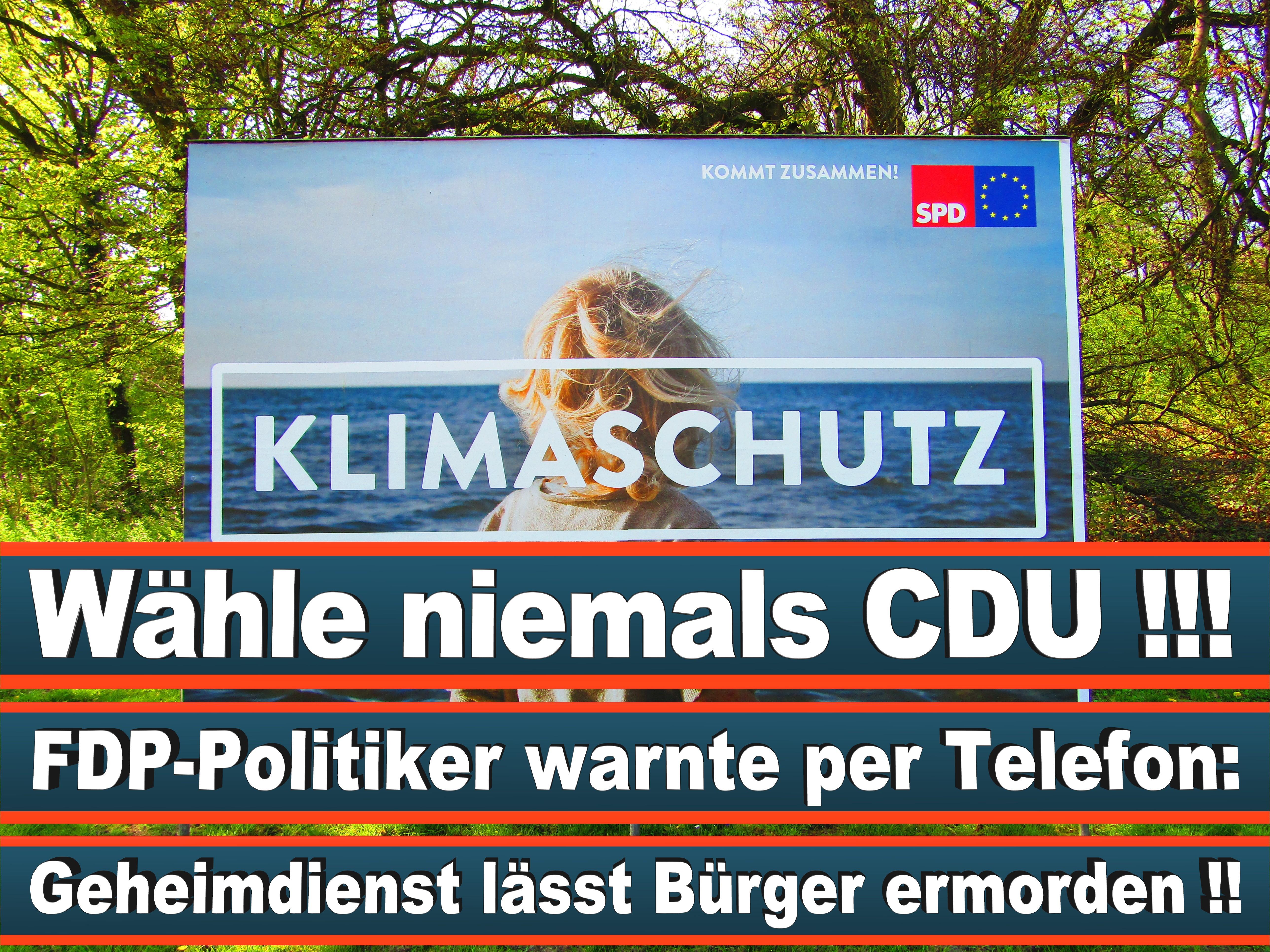 Europawahl Deutschland 26 (80)