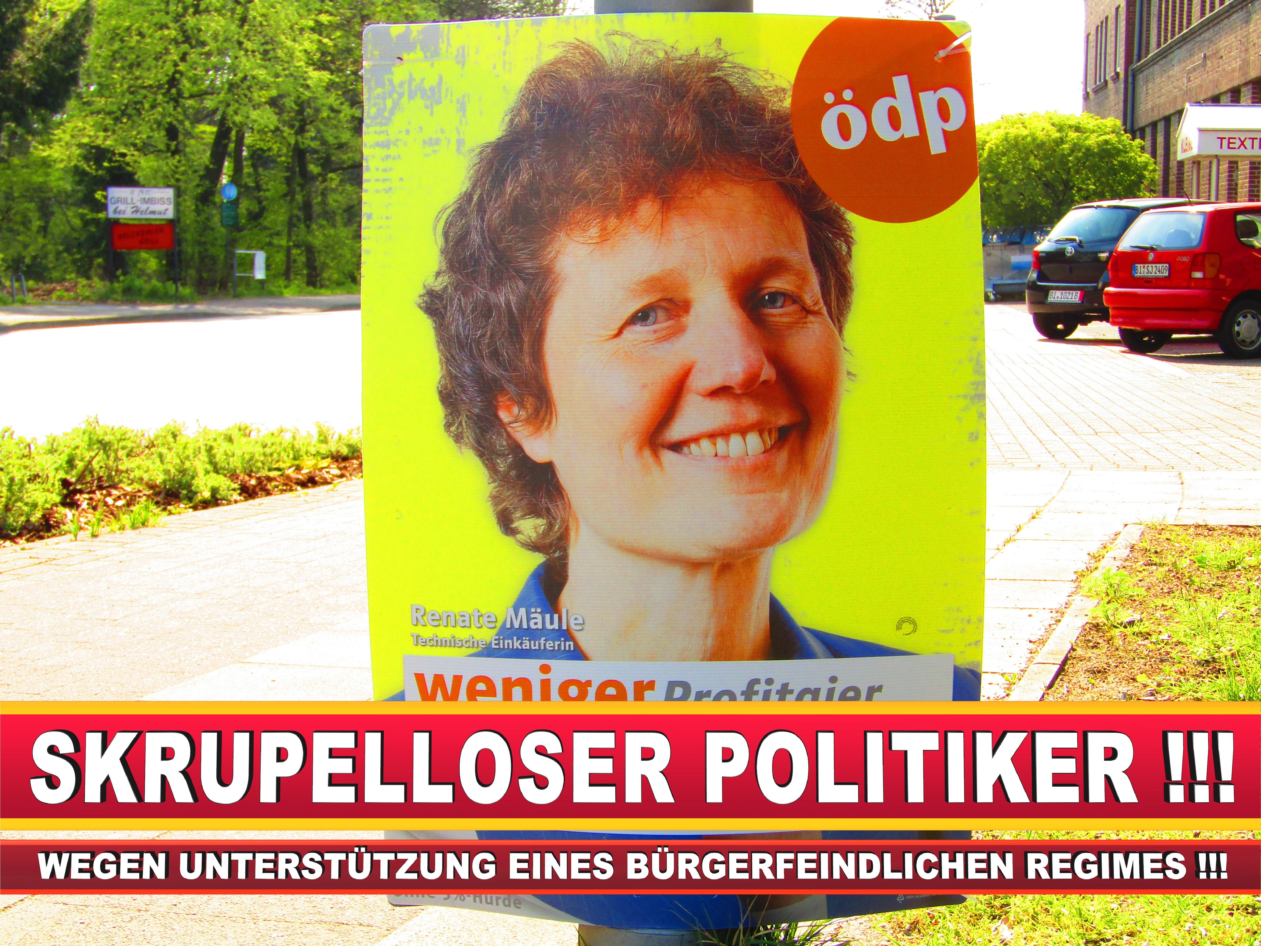 Europawahl Deutschland Wahlplakate CDU SPD FDP Grüne Linke AfD (1)