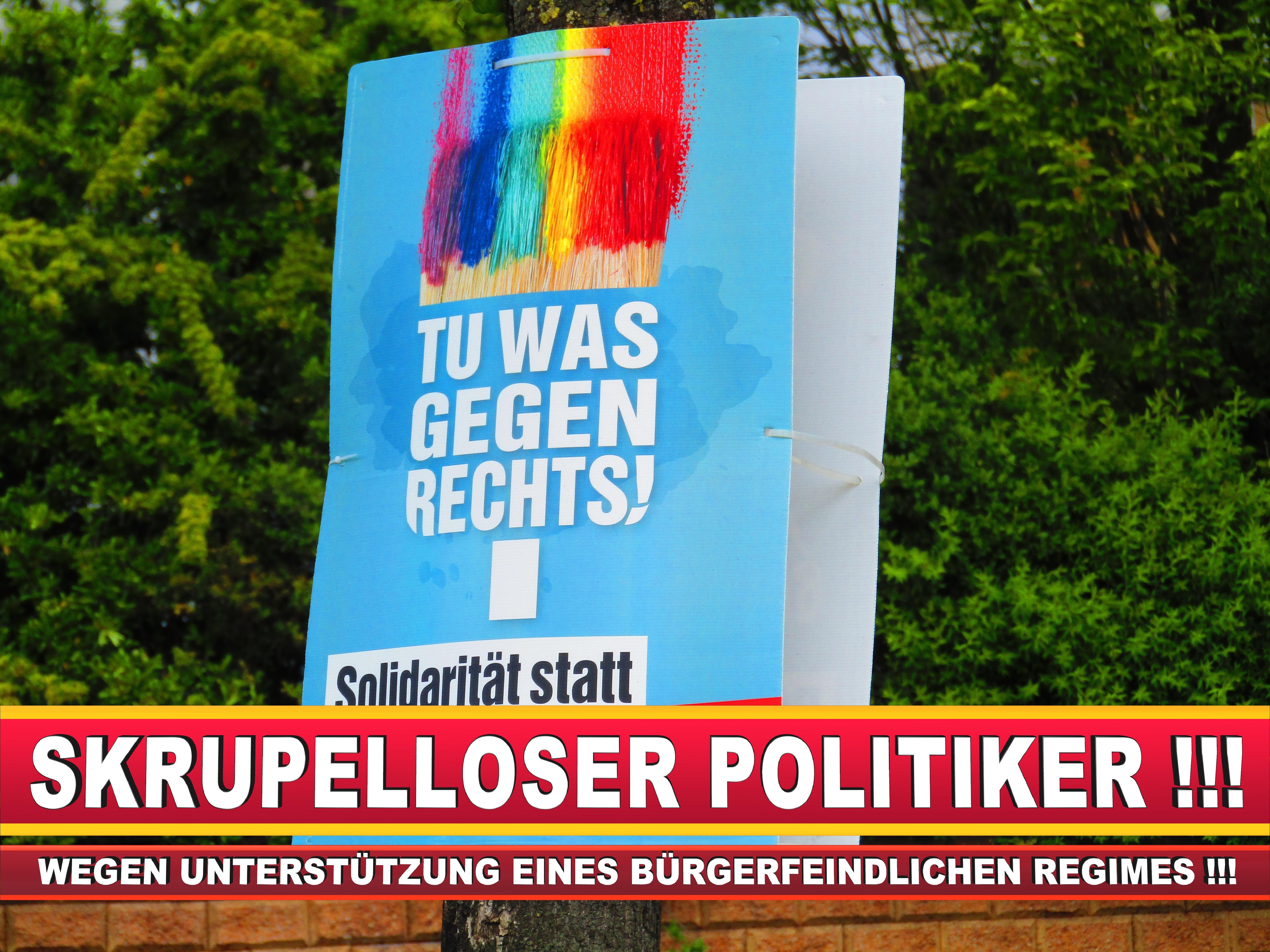 Europawahl Deutschland Wahlplakate CDU SPD FDP Grüne Linke AfD (27)