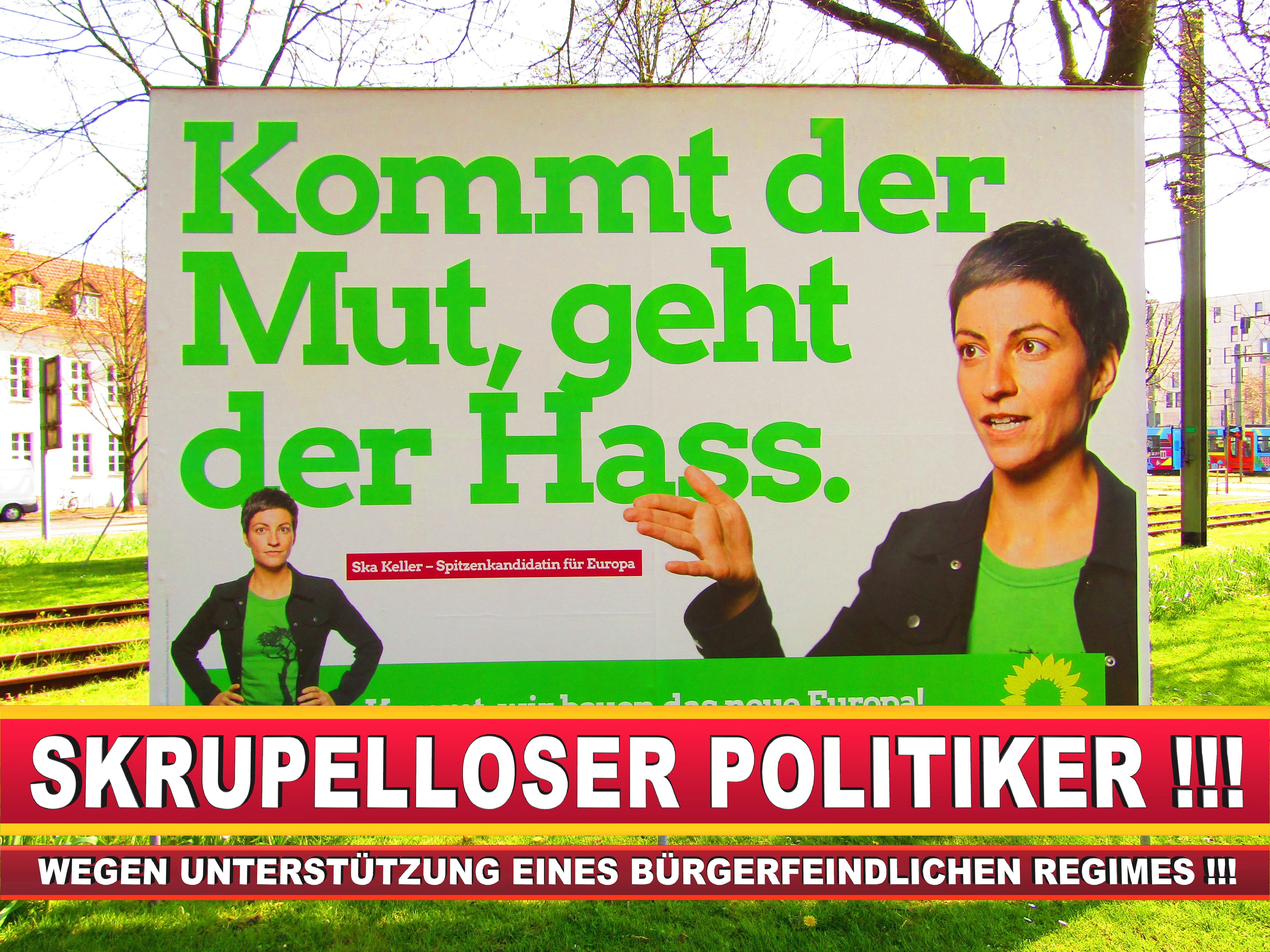 Europawahl Deutschland Wahlplakate CDU SPD FDP Grüne Linke AfD (44)