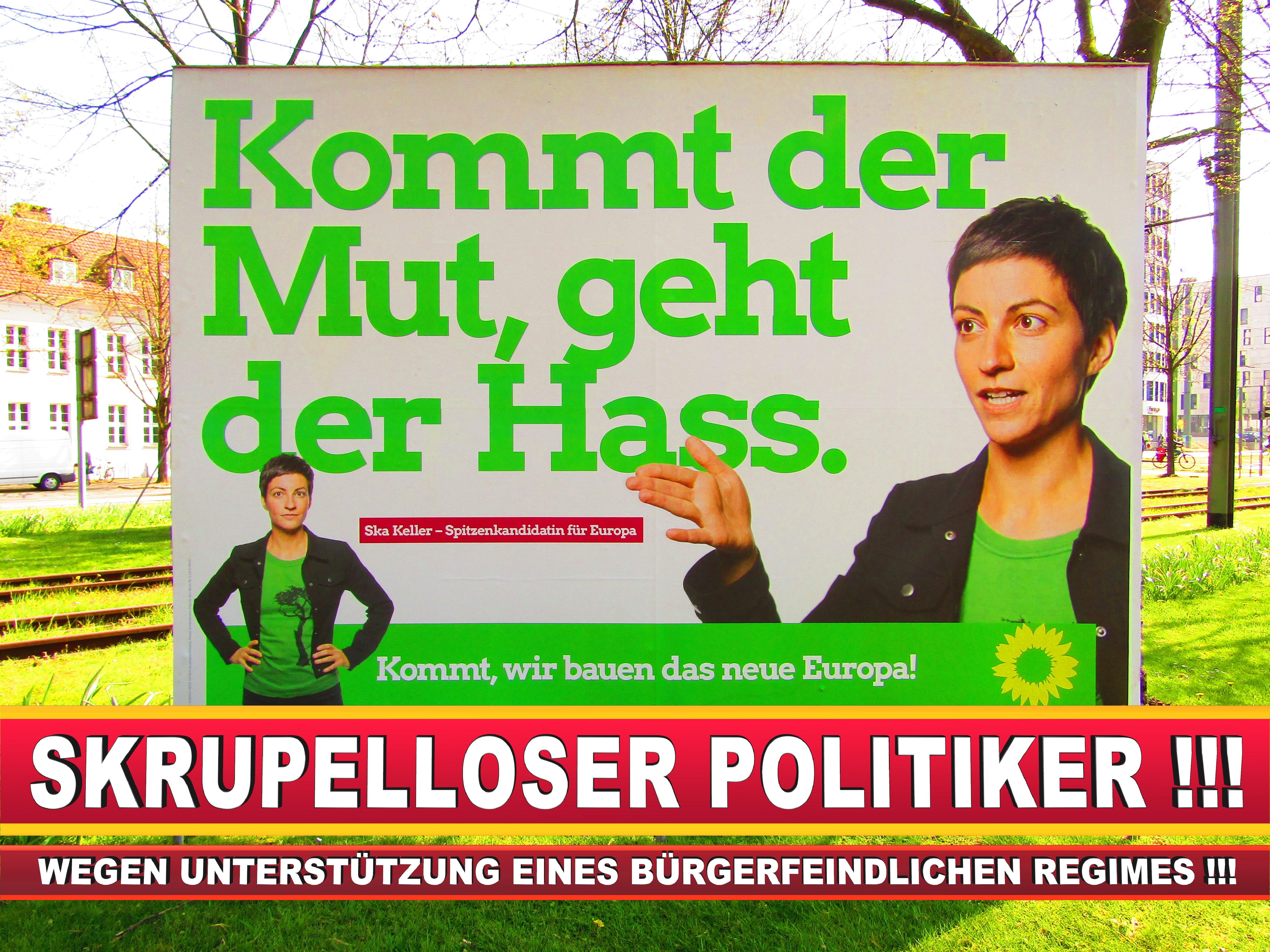 Europawahl Deutschland Wahlplakate CDU SPD FDP Grüne Linke AfD (45)