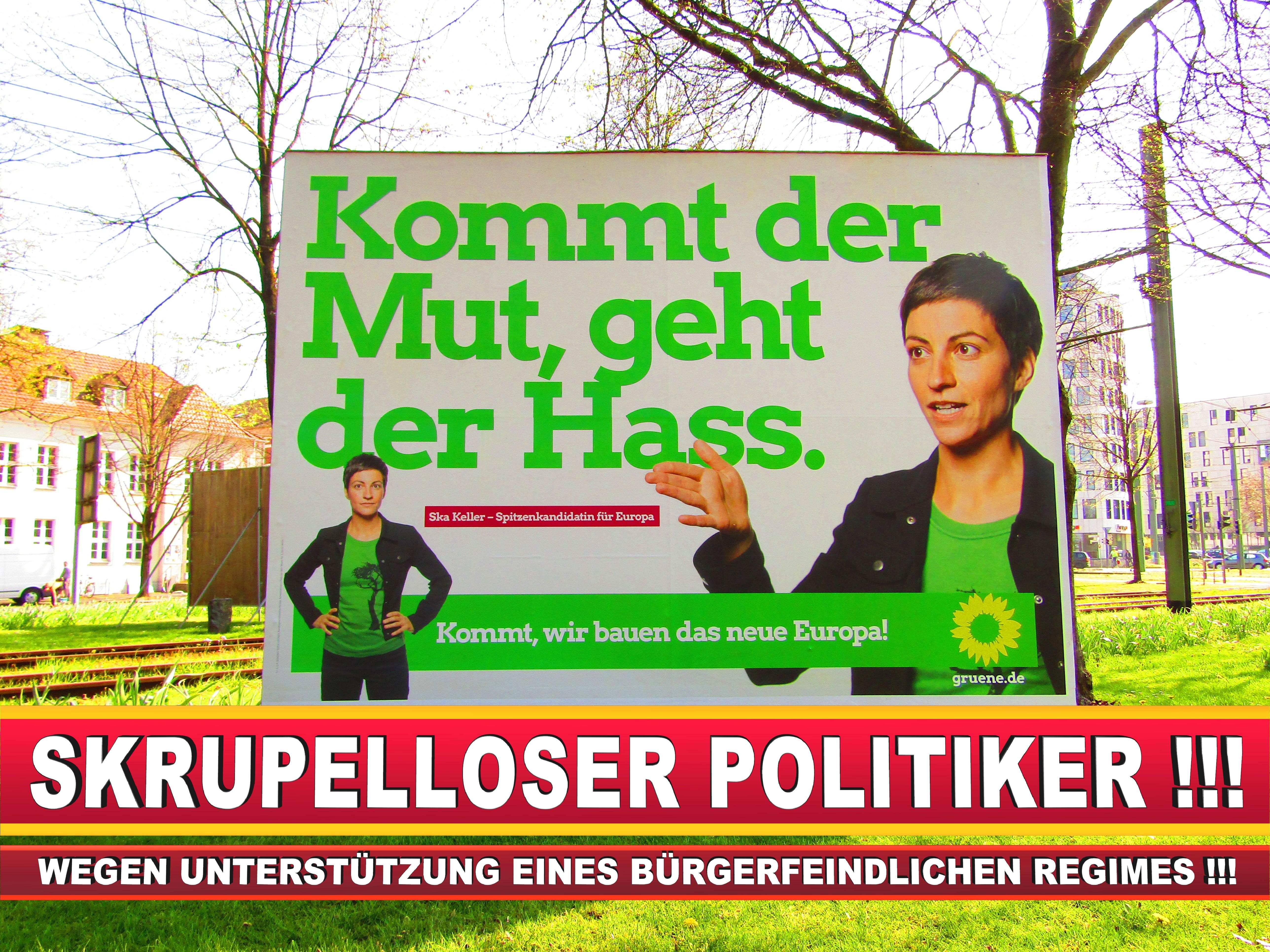 Europawahl Deutschland Wahlplakate CDU SPD FDP Grüne Linke AfD (46)