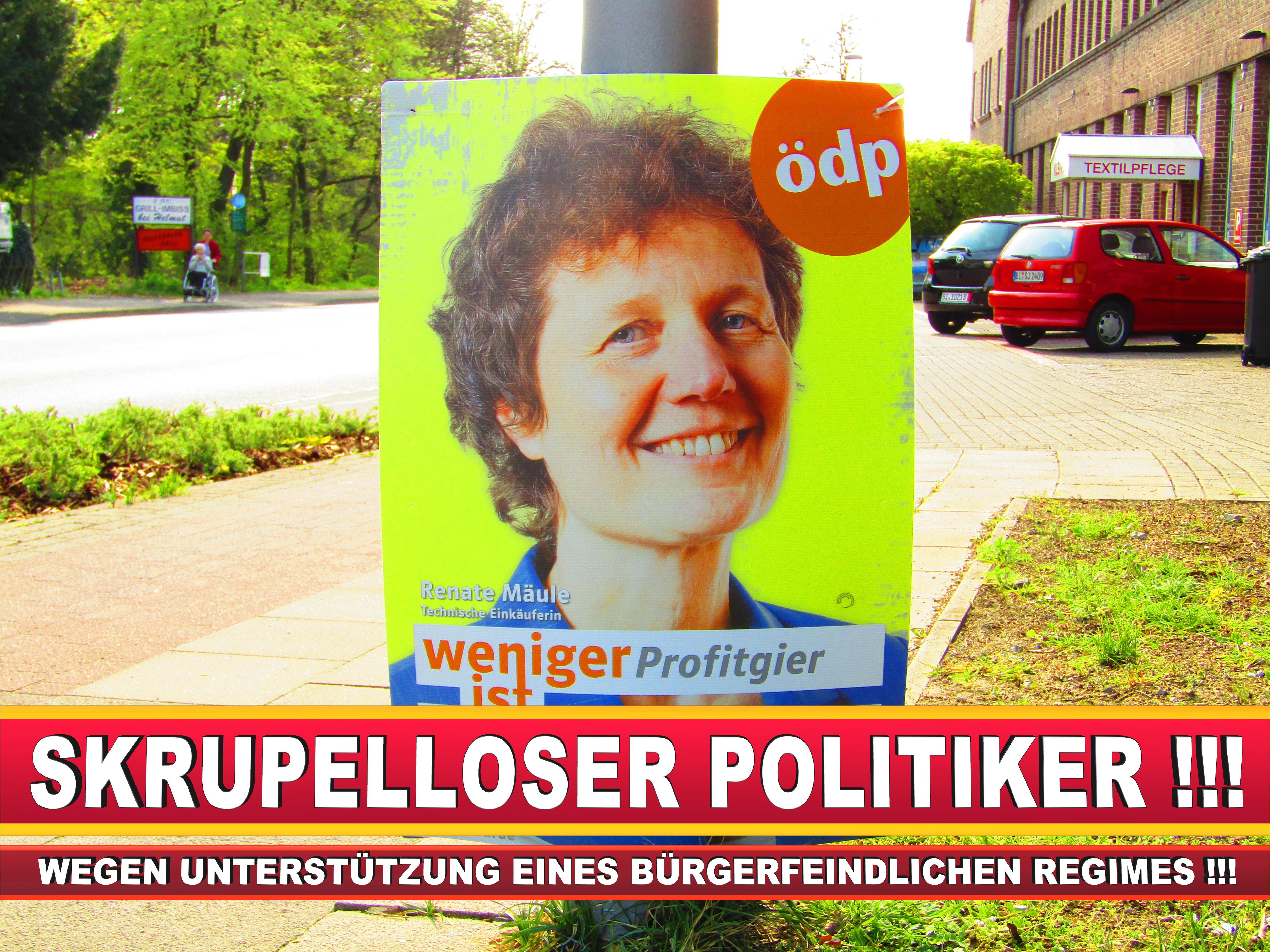 Europawahl Deutschland Wahlplakate CDU SPD FDP Grüne Linke AfD (97)